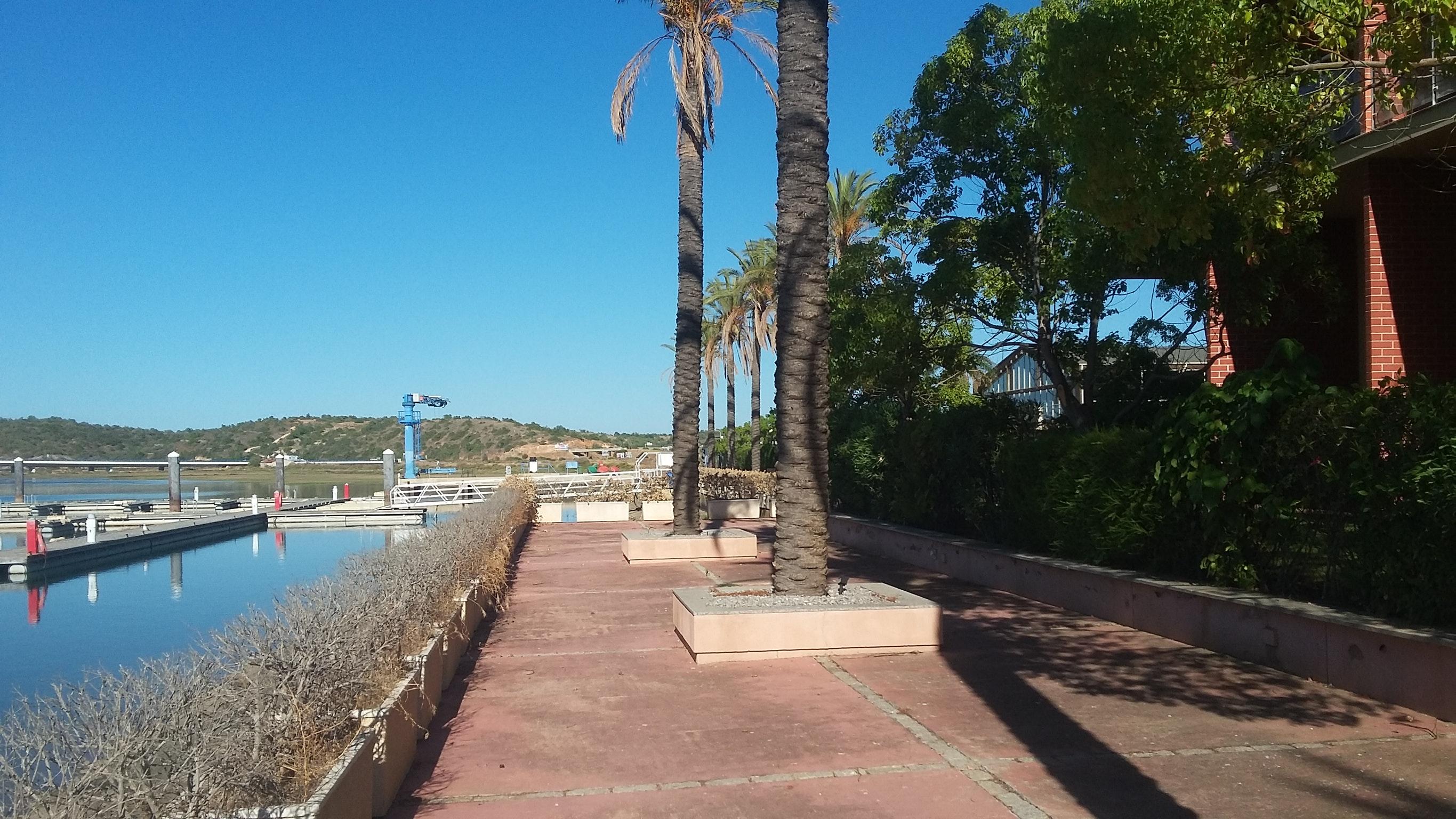 Ferienwohnung Wohnung mit einem Schlafzimmer in Estômbar mit bezauberndem Seeblick, Pool, eingezäuntem G (2623795), Estombar, , Algarve, Portugal, Bild 20
