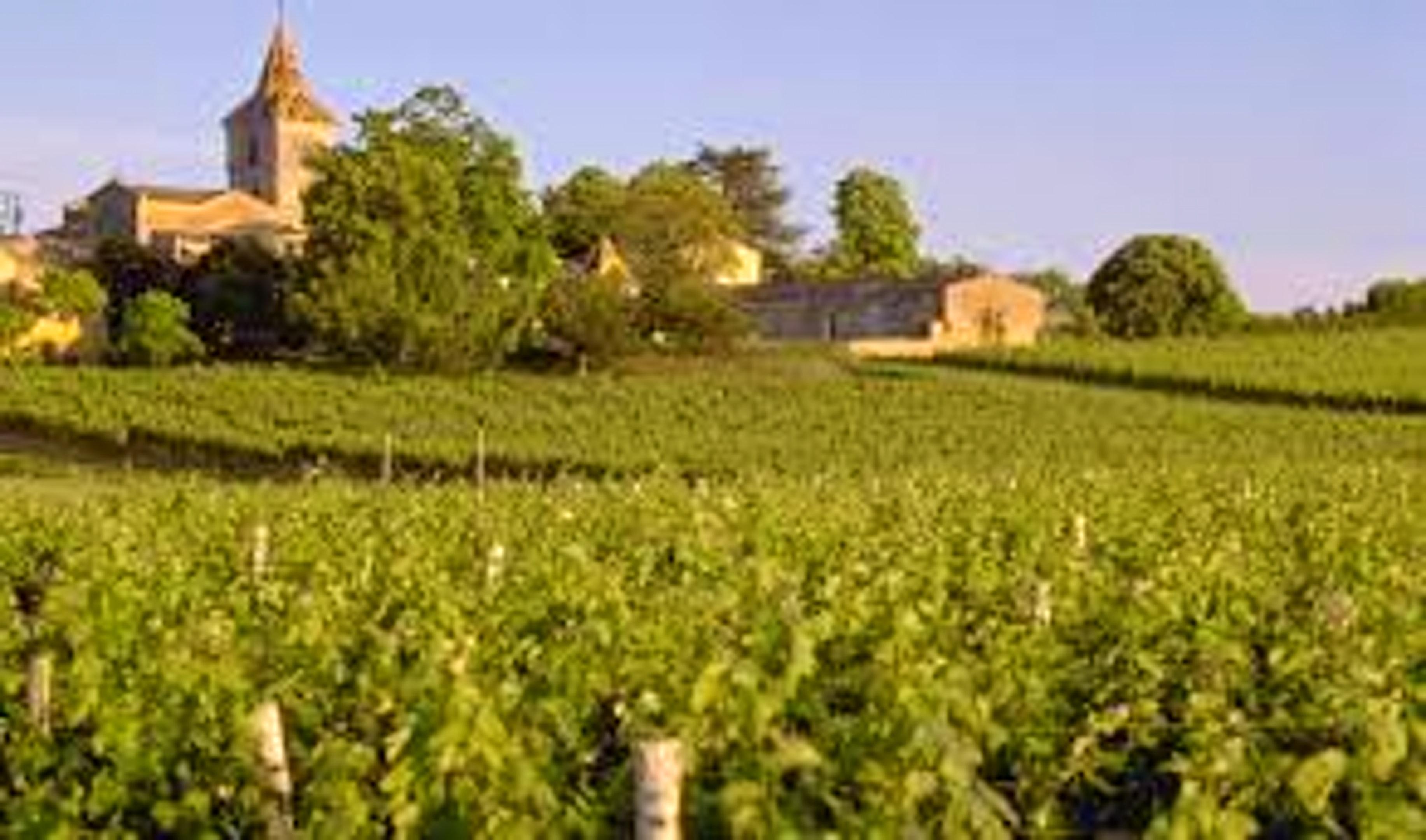 Maison de vacances Haus mit 3 Schlafzimmern in Blaye mit eingezäuntem Garten und W-LAN (2412383), Blaye, Gironde, Aquitaine, France, image 16