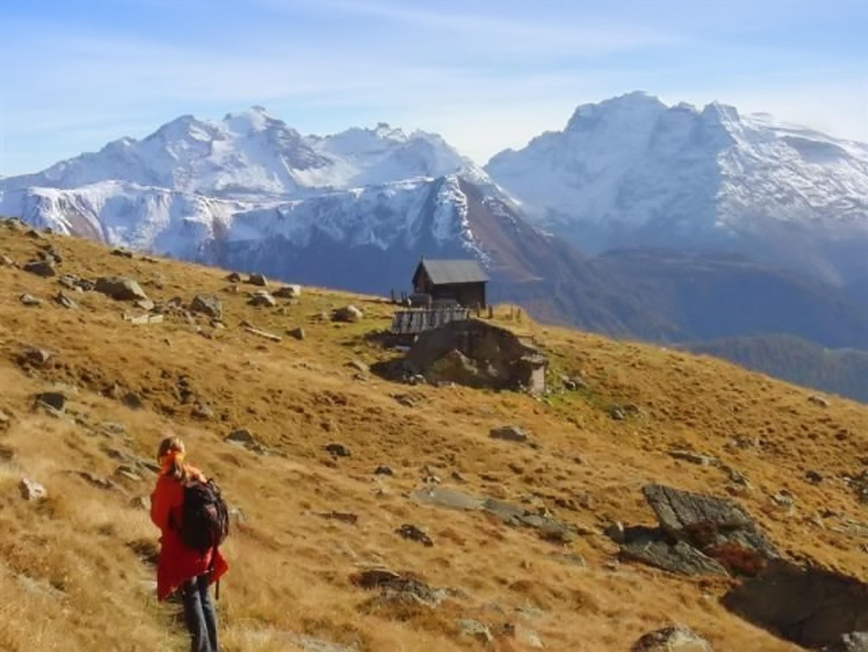 Ferienwohnung Wohnung mit 2 Schlafzimmern in Bellwald mit toller Aussicht auf die Berge, Balkon und W-LA (2201042), Bellwald, Aletsch - Goms, Wallis, Schweiz, Bild 18