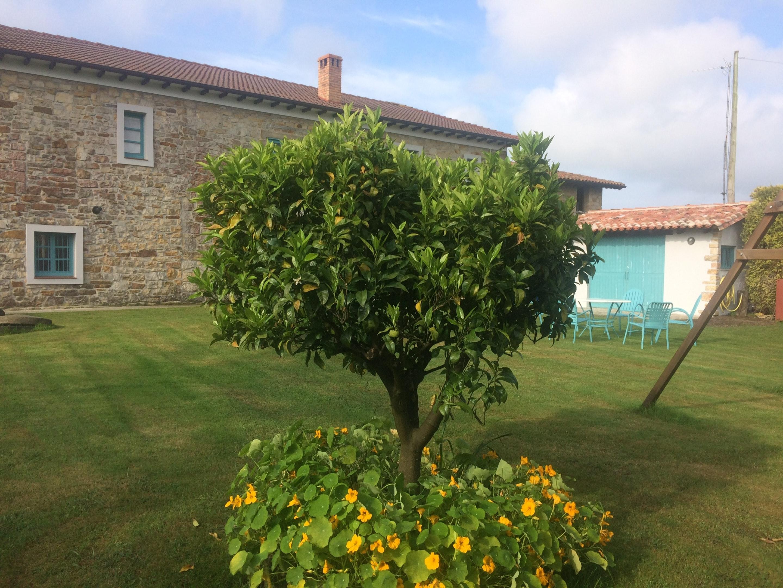 Ferienhaus Haus mit 7 Schlafzimmern in Villaviciosa mit toller Aussicht auf die Berge, eingezäuntem G (2239815), Villaverde, Costa Verde (ES), Asturien, Spanien, Bild 26