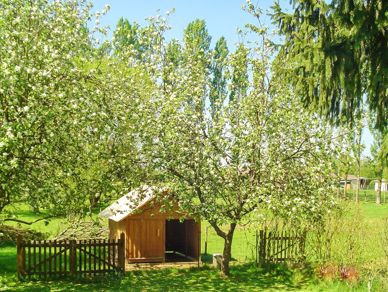 Maison de vacances Haus mit 2 Schlafzimmern in Chamblay mit möbliertem Garten und W-LAN (2201524), Chamblay, Jura, Franche-Comté, France, image 18
