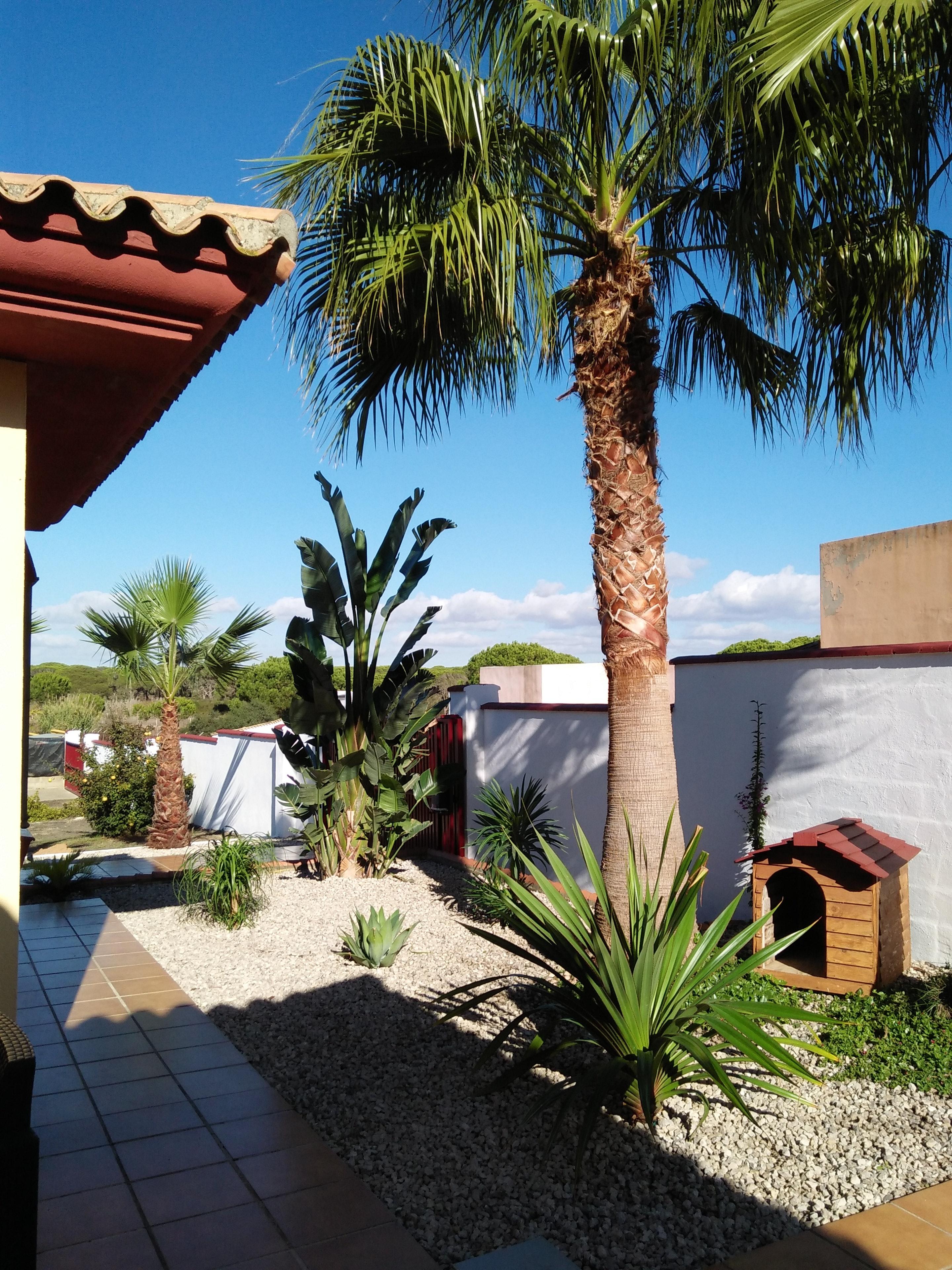 Haus mit 3 Schlafzimmern in Chiclana de la Frontera mit privatem Pool, eingezäuntem Garten und W-LAN - 2 km vom Strand entfernt