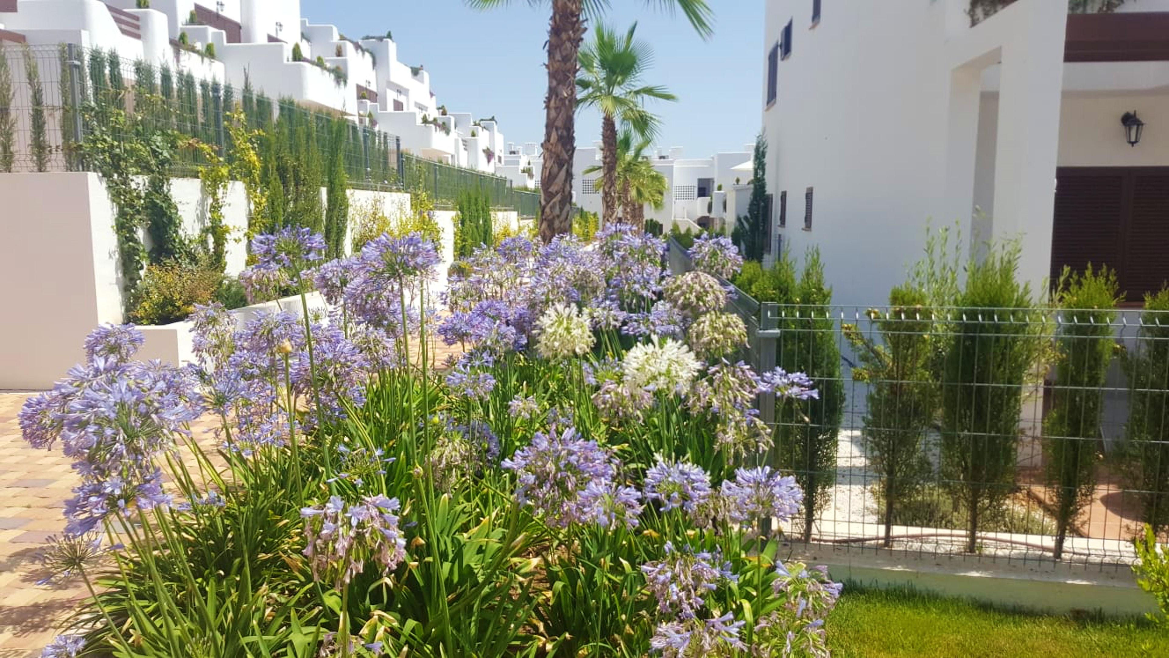 Ferienwohnung Wohnung mit 2 Schlafzimmern in San Juan de los Terreros mit herrlichem Meerblick, Pool, ei (2372661), San Juan de los Terreros, Costa de Almeria, Andalusien, Spanien, Bild 27