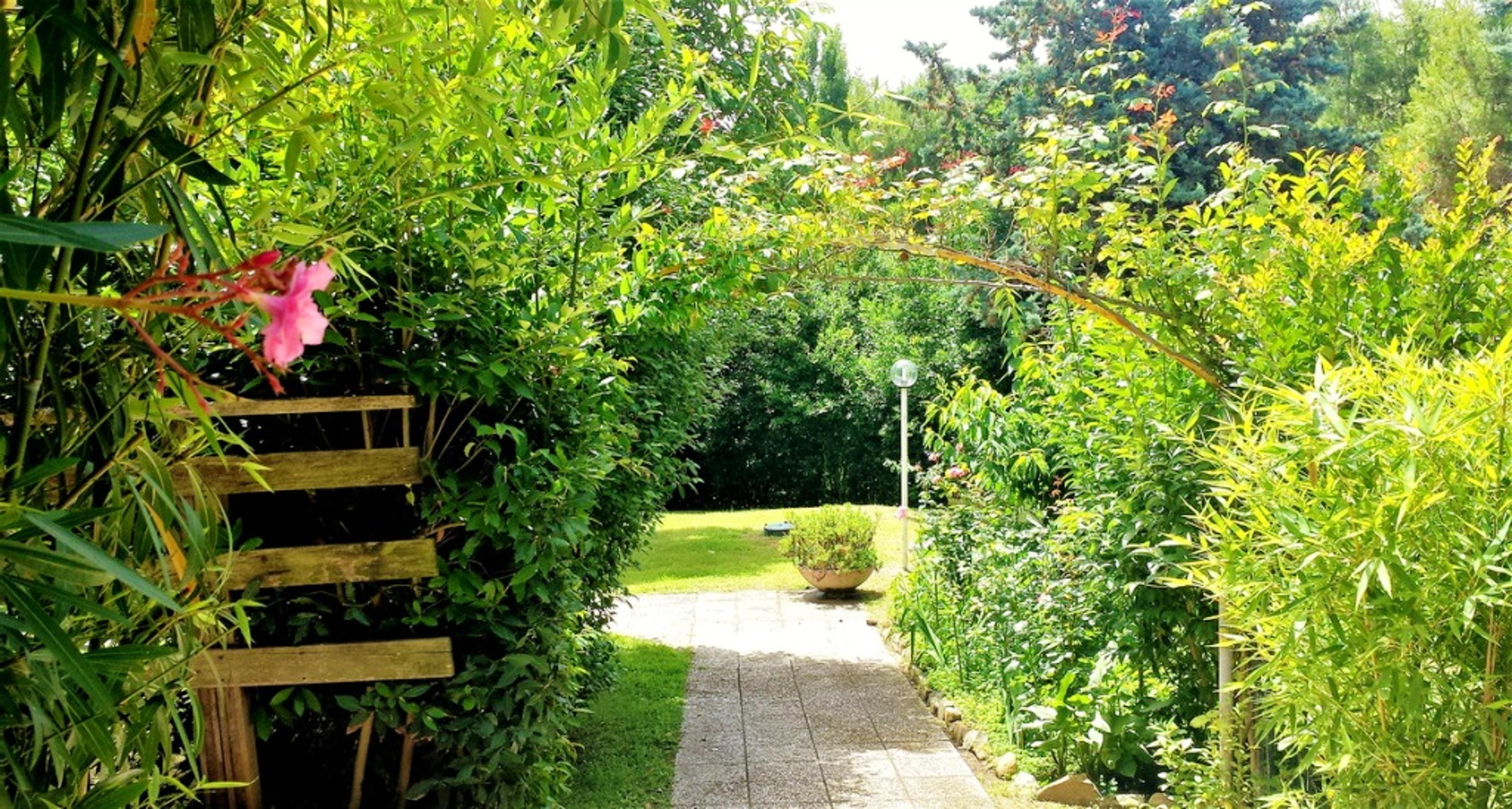 Ferienhaus Villa mit 5 Schlafzimmern in Pesaro mit privatem Pool, eingezäuntem Garten und W-LAN - 3 k (2202299), Pesaro, Pesaro und Urbino, Marken, Italien, Bild 15