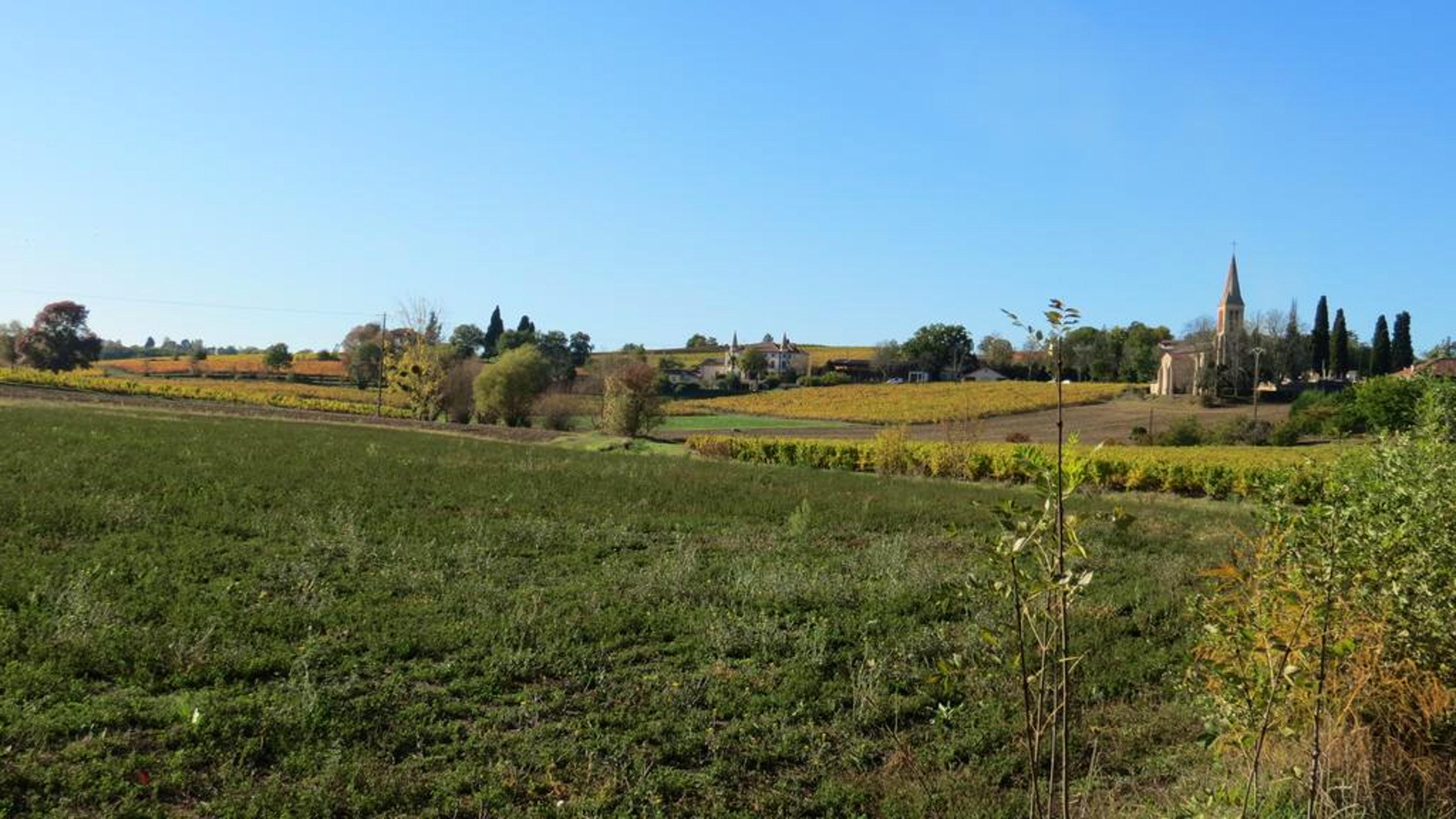 Ferienhaus Haus mit 4 Schlafzimmern in Gaillac mit eingezäuntem Garten und W-LAN (2339979), Gaillac, Tarn, Midi-Pyrénées, Frankreich, Bild 14