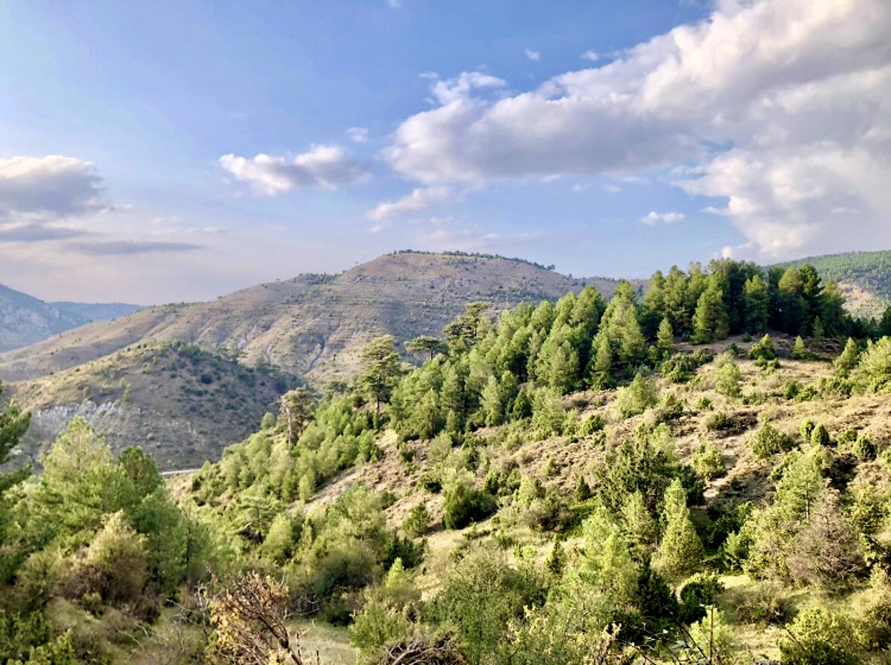 Maison de vacances Hütte mit 4 Schlafzimmern in Camarena de la Sierra mit toller Aussicht auf die Berge, priv (2474258), Camarena de la Sierra, Teruel, Aragon, Espagne, image 36