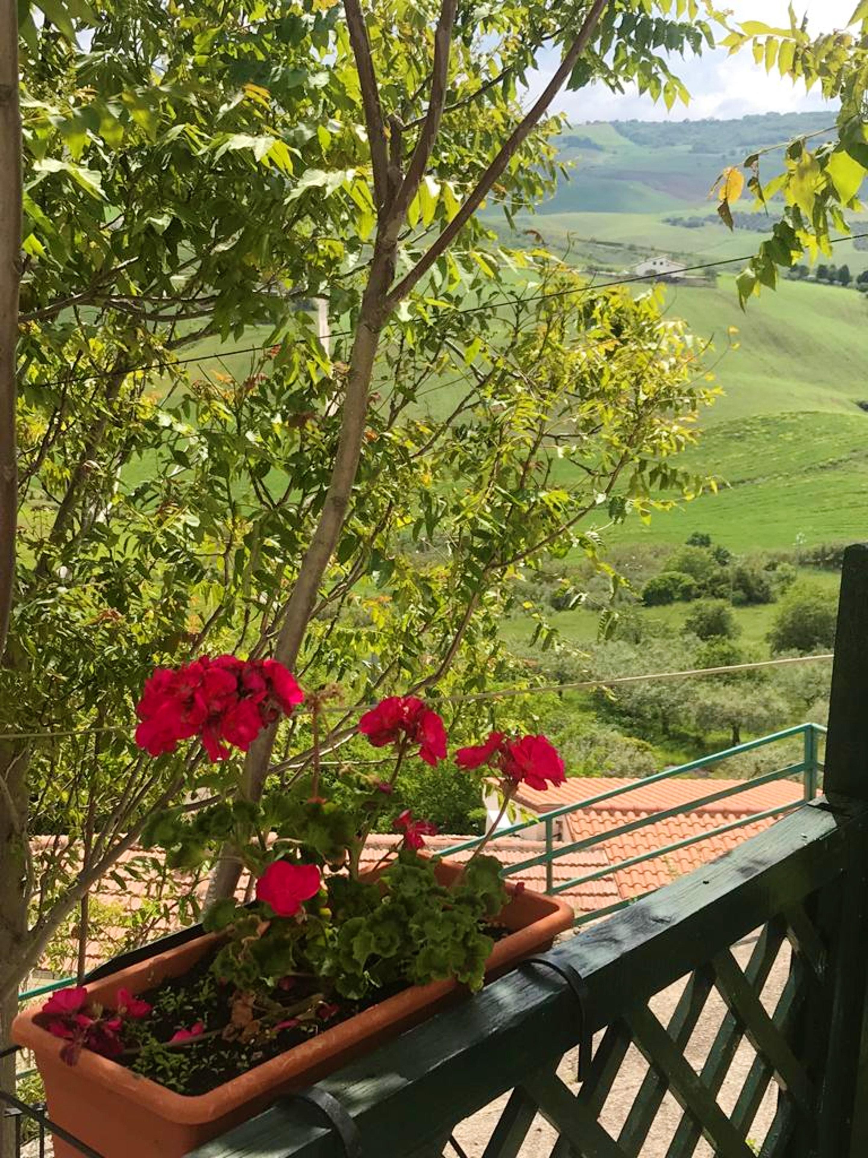 Ferienwohnung Wohnung mit einem Schlafzimmer in Montenero di Bisaccia mit möbliertem Balkon - 10 km vom  (2644862), Montenero di Bisaccia, Campobasso, Molise, Italien, Bild 9