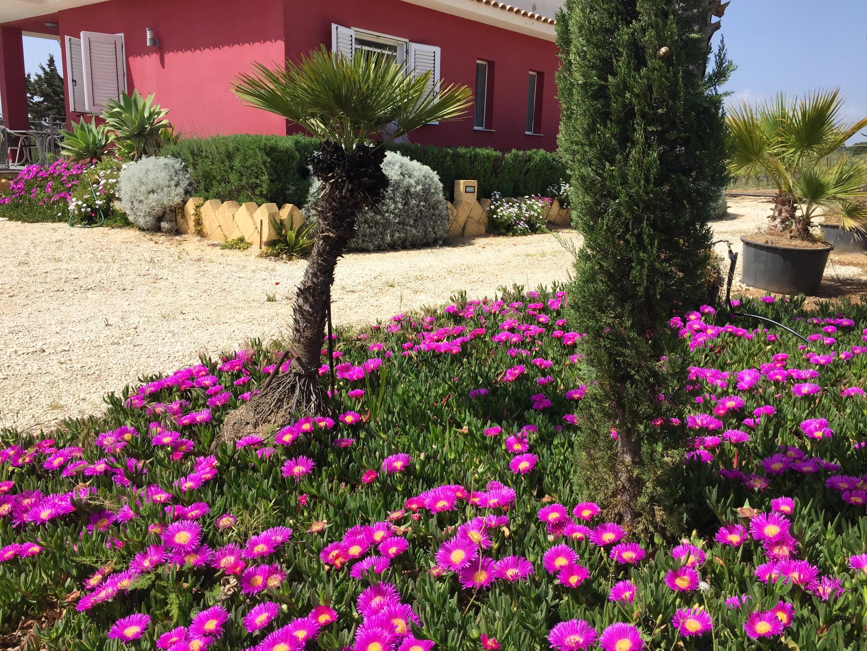Ferienhaus Villa mit 2 Schlafzimmern in Sciacca mit herrlichem Meerblick, eingezäuntem Garten und W-L (2201303), Sciacca, Agrigento, Sizilien, Italien, Bild 8