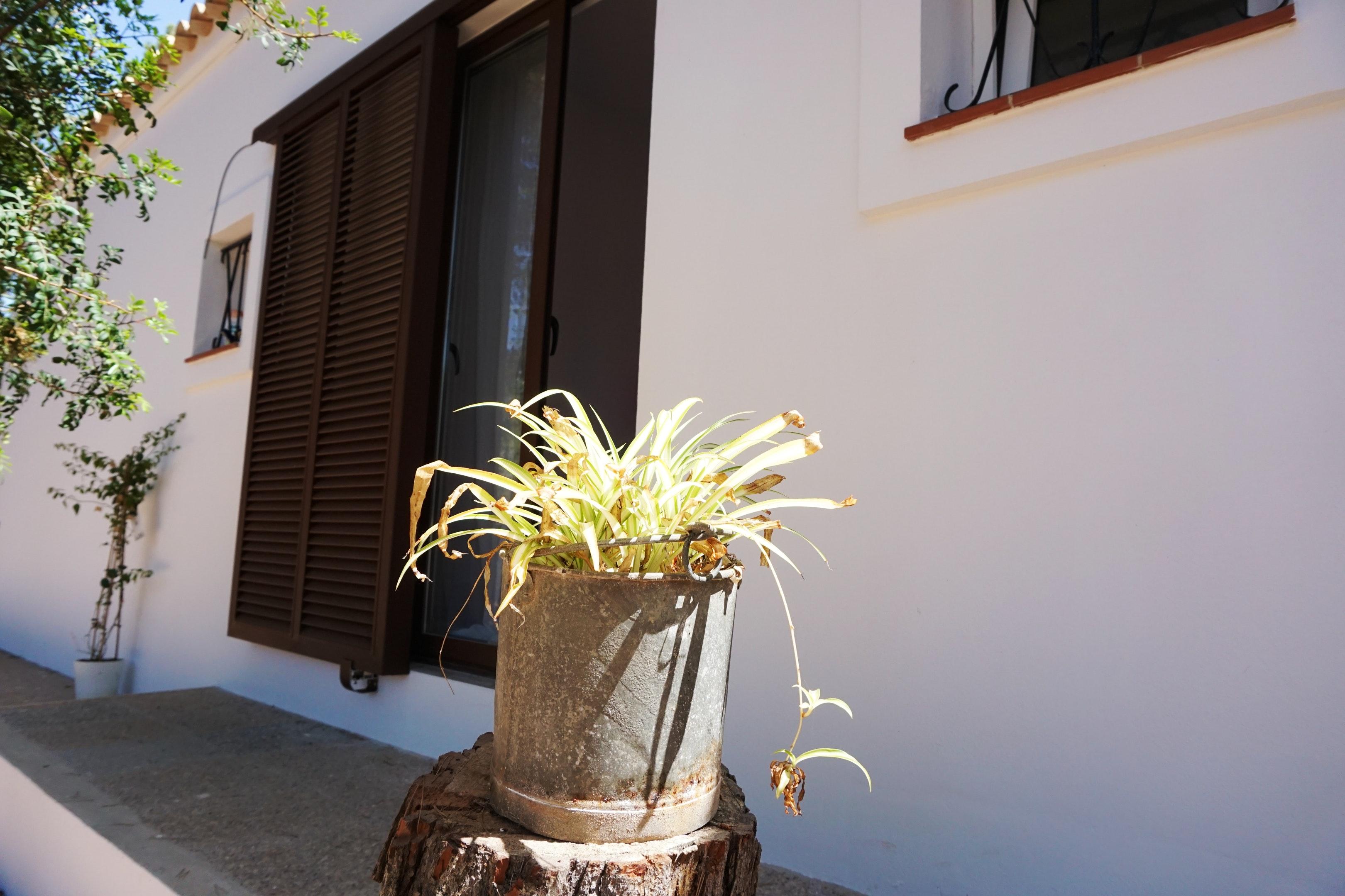 Maison de vacances Haus mit 2 Schlafzimmern in Platja de Migjorn mit möbliertem Garten und W-LAN - 500 m vom  (2401818), San Fernando, Formentera, Iles Baléares, Espagne, image 27