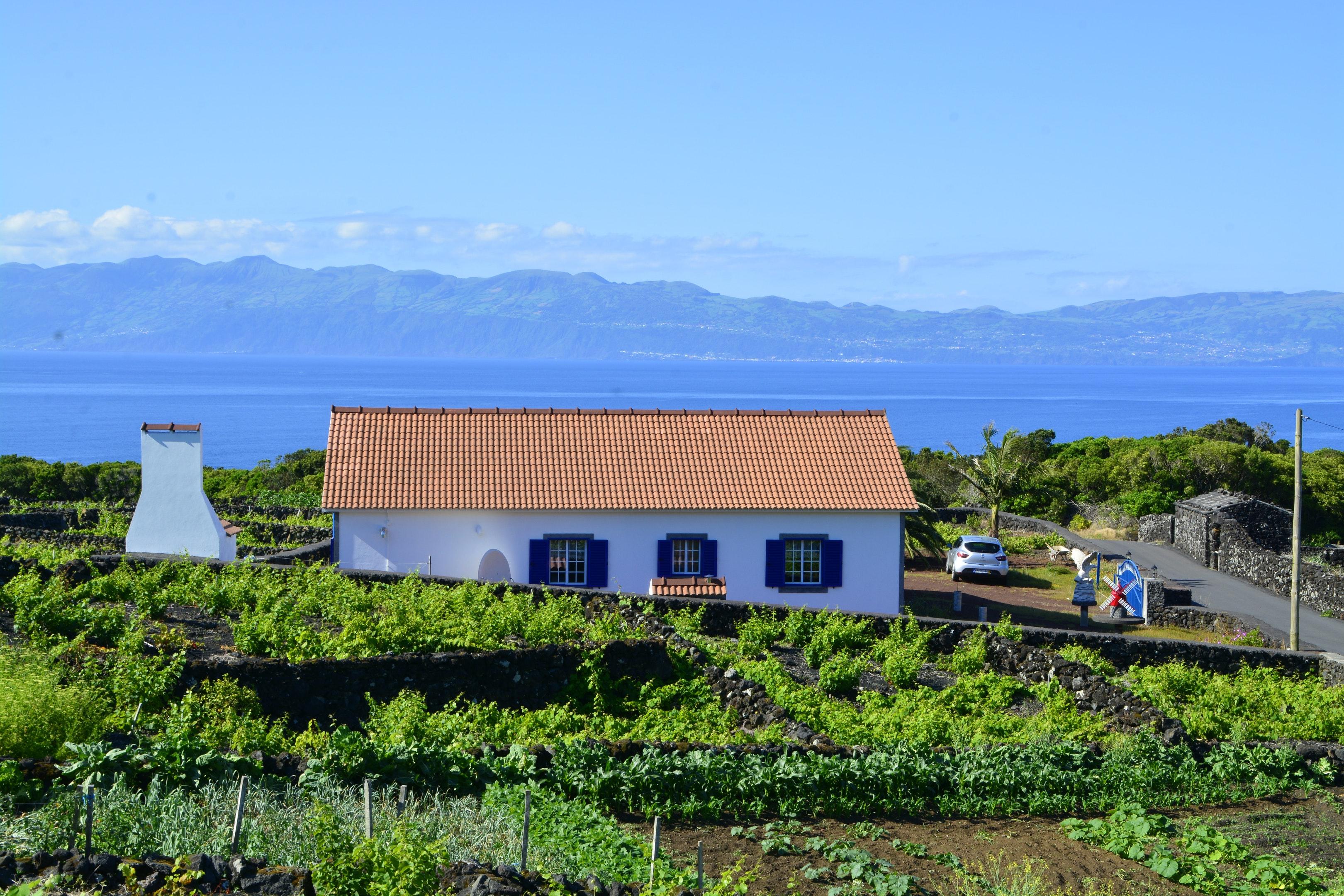 Ferienhaus Haus mit 2 Schlafzimmern in Baixa mit herrlichem Meerblick und eingezäuntem Garten (2202753), Baixa, Pico, Azoren, Portugal, Bild 8
