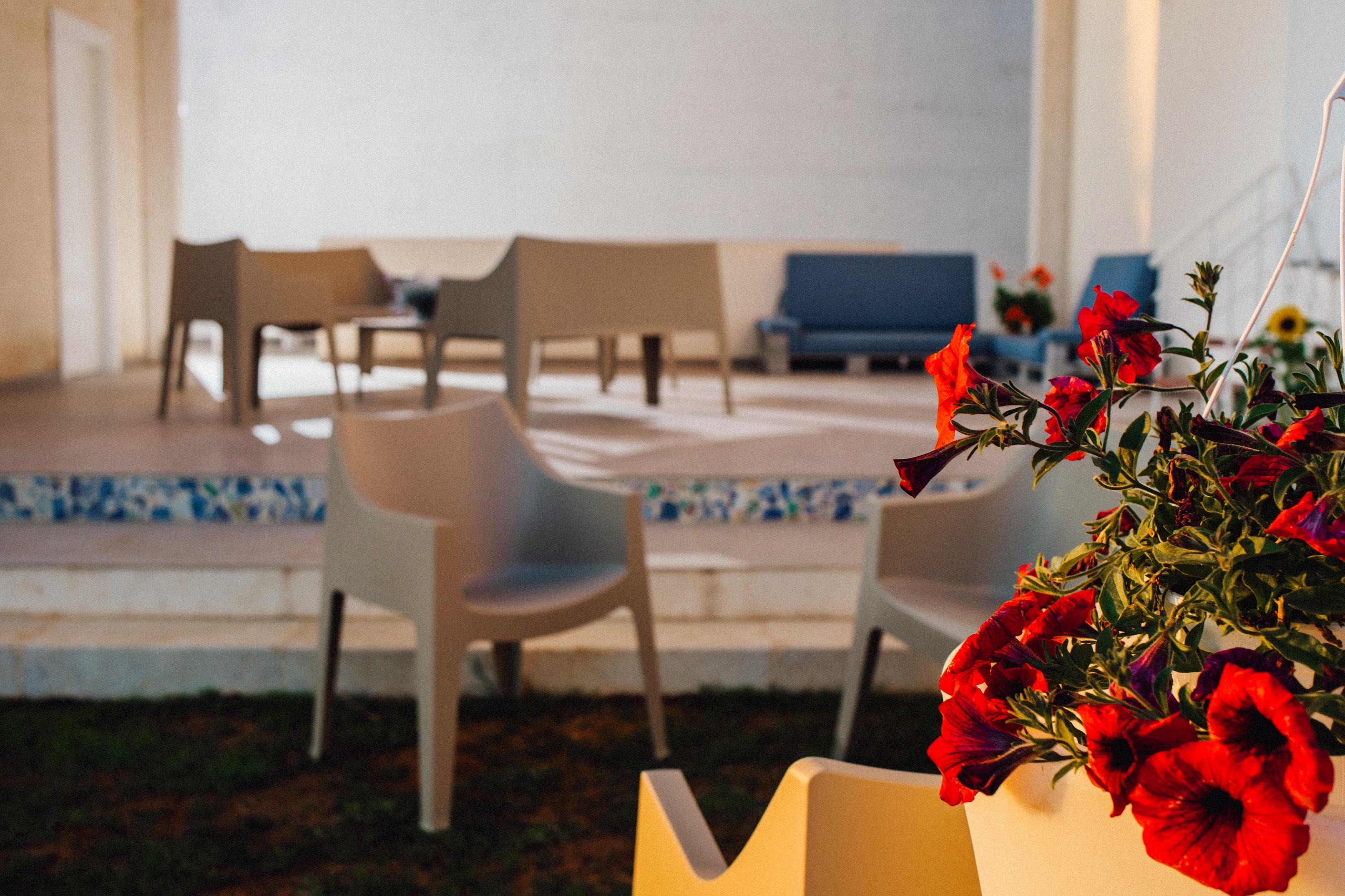Holiday apartment Wohnung mit einem Schlafzimmer in Balestrate mit herrlichem Meerblick, eingezäuntem Garten (2635382), Balestrate, Palermo, Sicily, Italy, picture 19