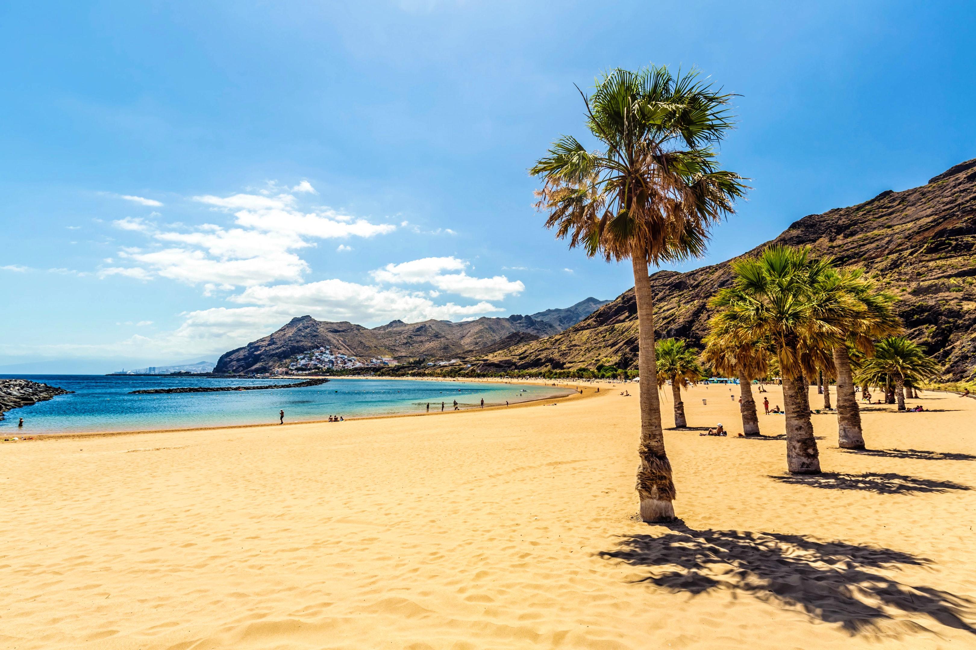 Appartement de vacances Studio in Santa Cruz de Tenerife mit Pool und möbliertem Garten (2218191), San Miguel, Ténérife, Iles Canaries, Espagne, image 27