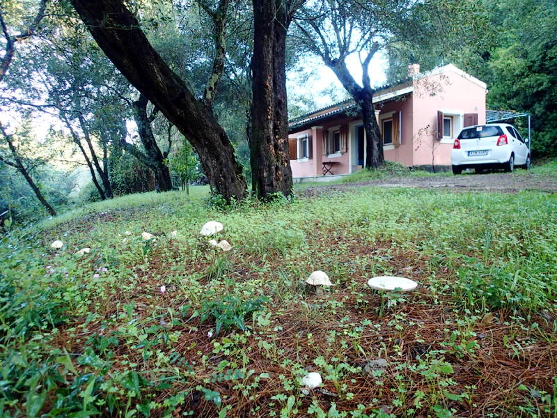 Maison de vacances Haus mit 2 Schlafzimmern in Corfou mit toller Aussicht auf die Berge (2202447), Moraitika, Corfou, Iles Ioniennes, Grèce, image 18