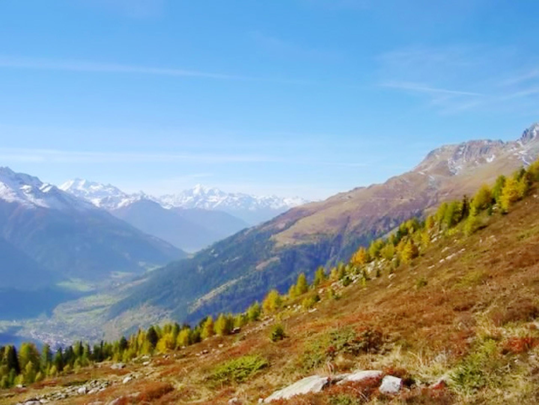 Appartement de vacances Wohnung mit 2 Schlafzimmern in Bellwald mit toller Aussicht auf die Berge, Balkon und W-LA (2201042), Bellwald, Aletsch - Conches, Valais, Suisse, image 16