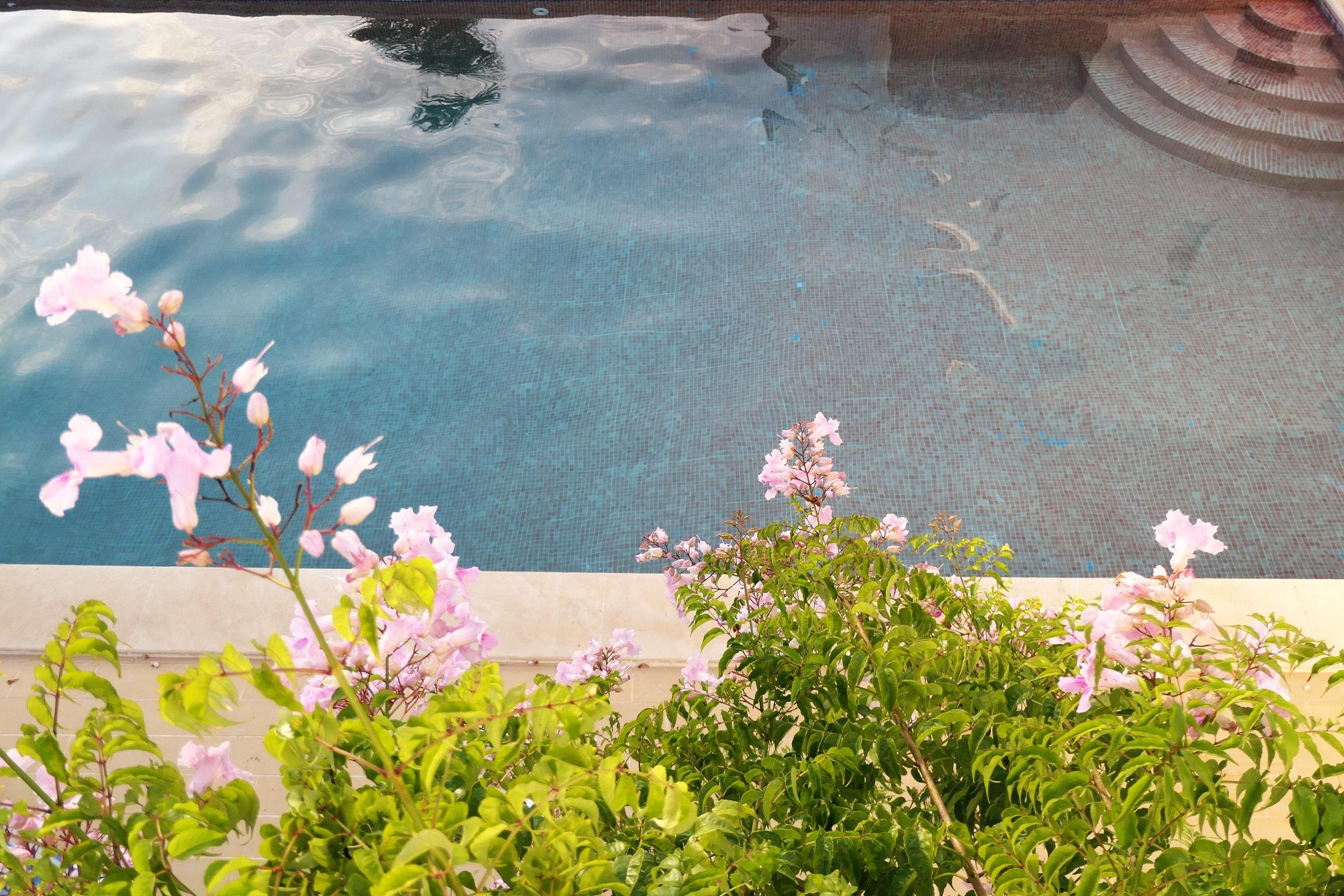 Ferienwohnung Wohnung mit 2 Schlafzimmern in Carvoeiro mit Pool, eingezäuntem Garten und W-LAN - 500 m v (2622212), Carvoeiro, , Algarve, Portugal, Bild 20