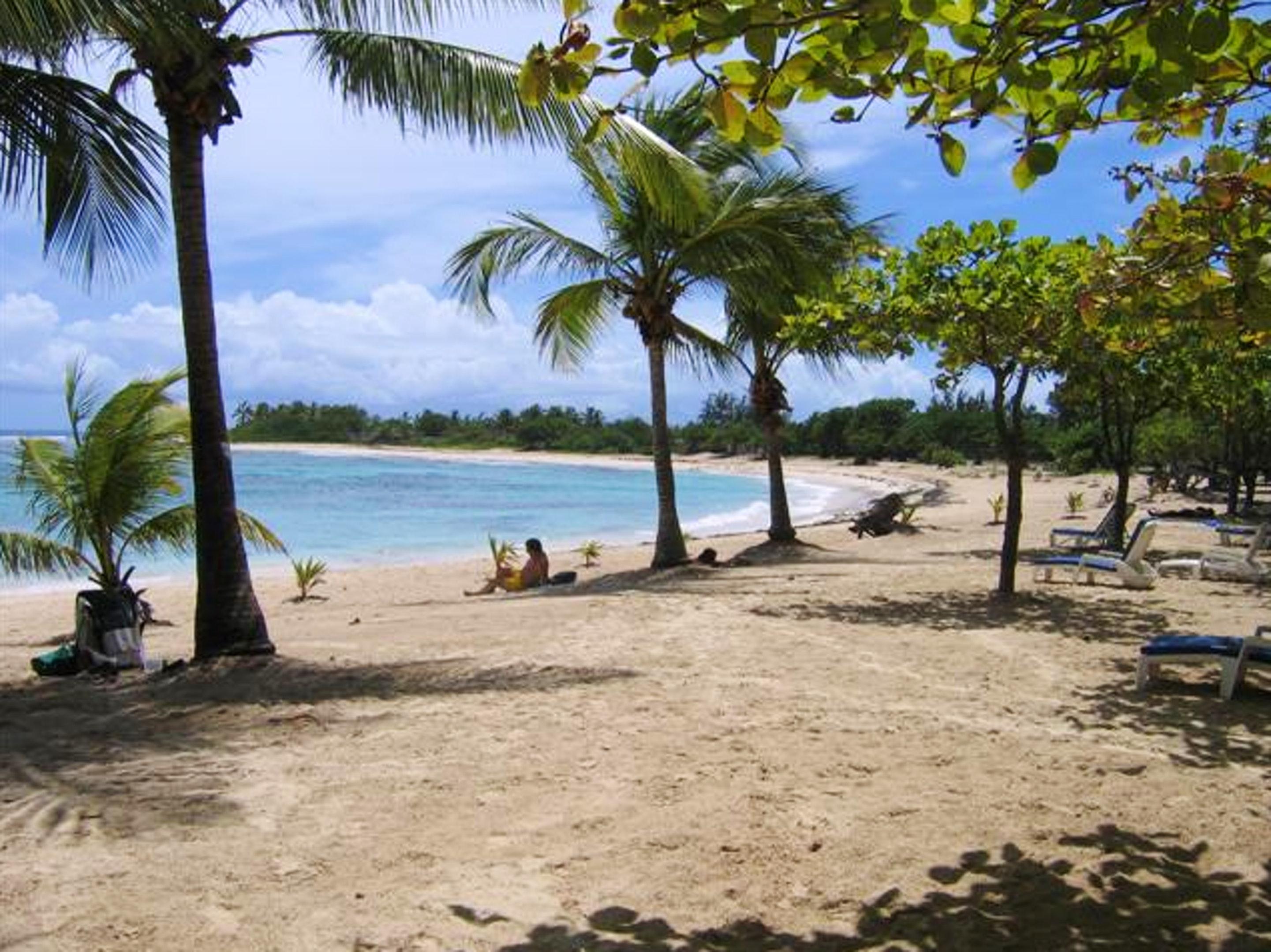 Immobilie mit einem Schlafzimmer in Saint-Francois Ferienhaus in Guadeloupe