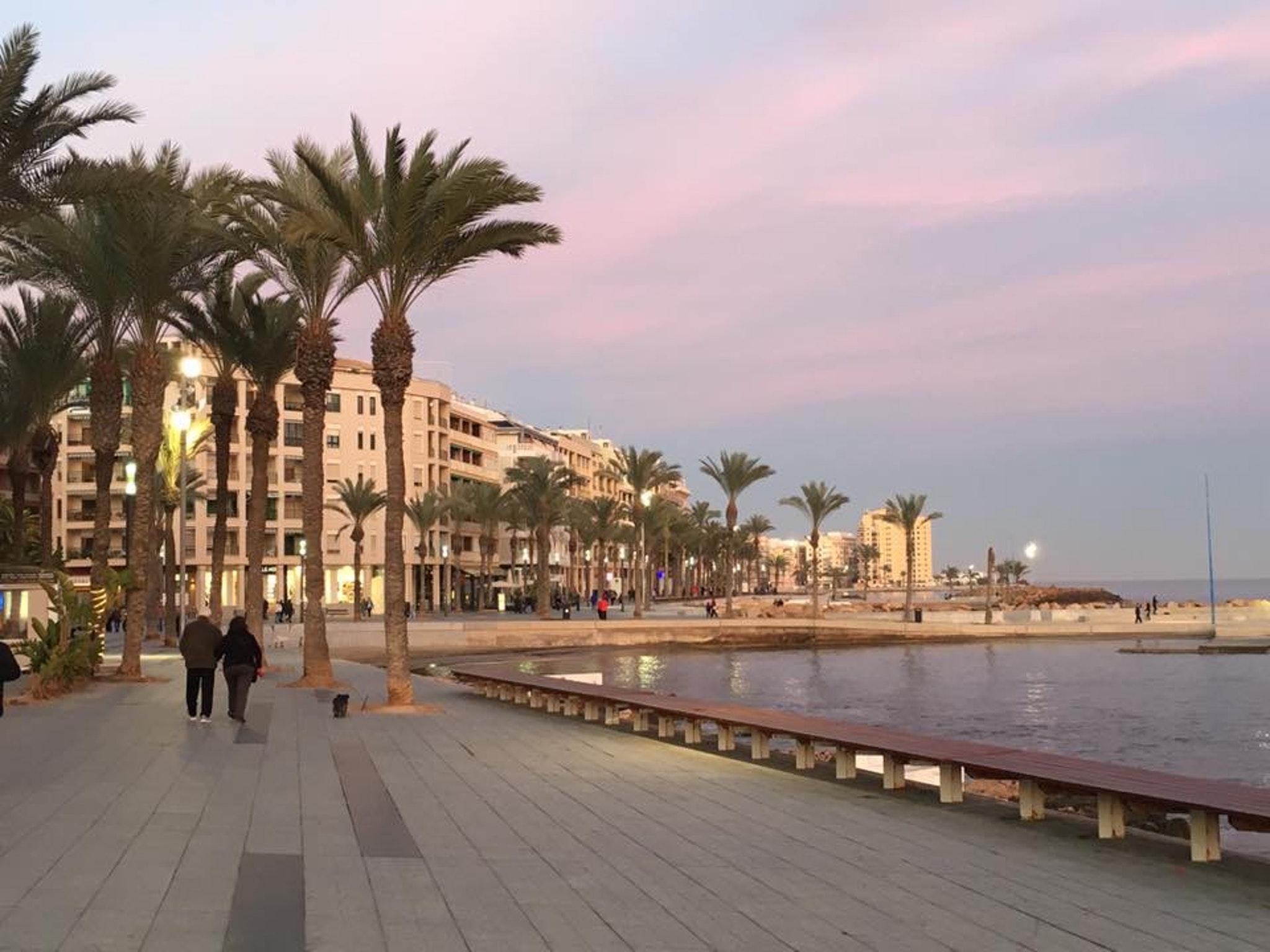 Ferienwohnung Wohnung mit 2 Schlafzimmern in Torrevieja mit Pool und möblierter Terrasse - 400 m vom Str (2342556), Torrevieja, Costa Blanca, Valencia, Spanien, Bild 2
