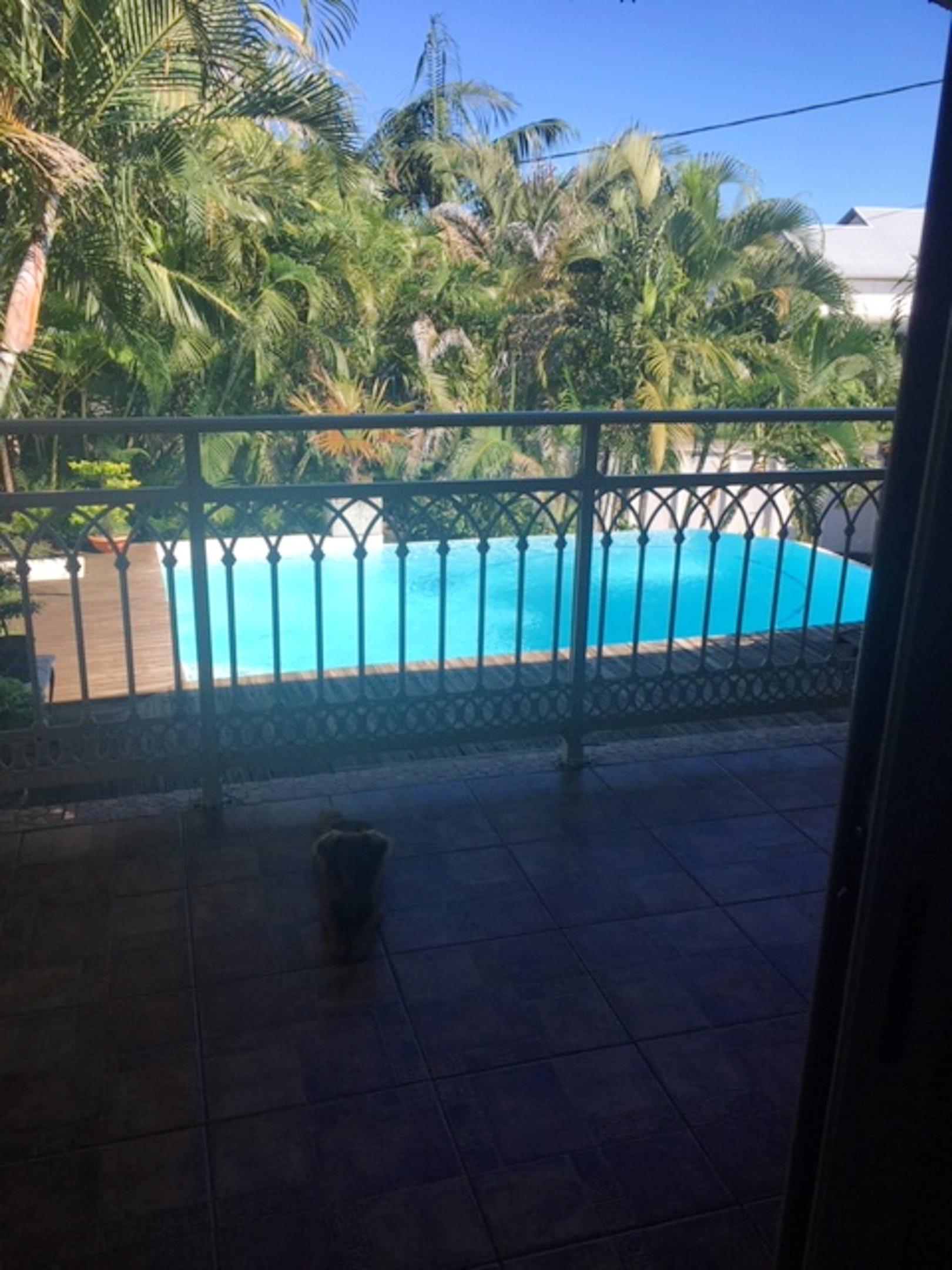 Haus mit 4 Schlafzimmern in Saint-Joseph mit Pool, Ferienhaus in Afrika