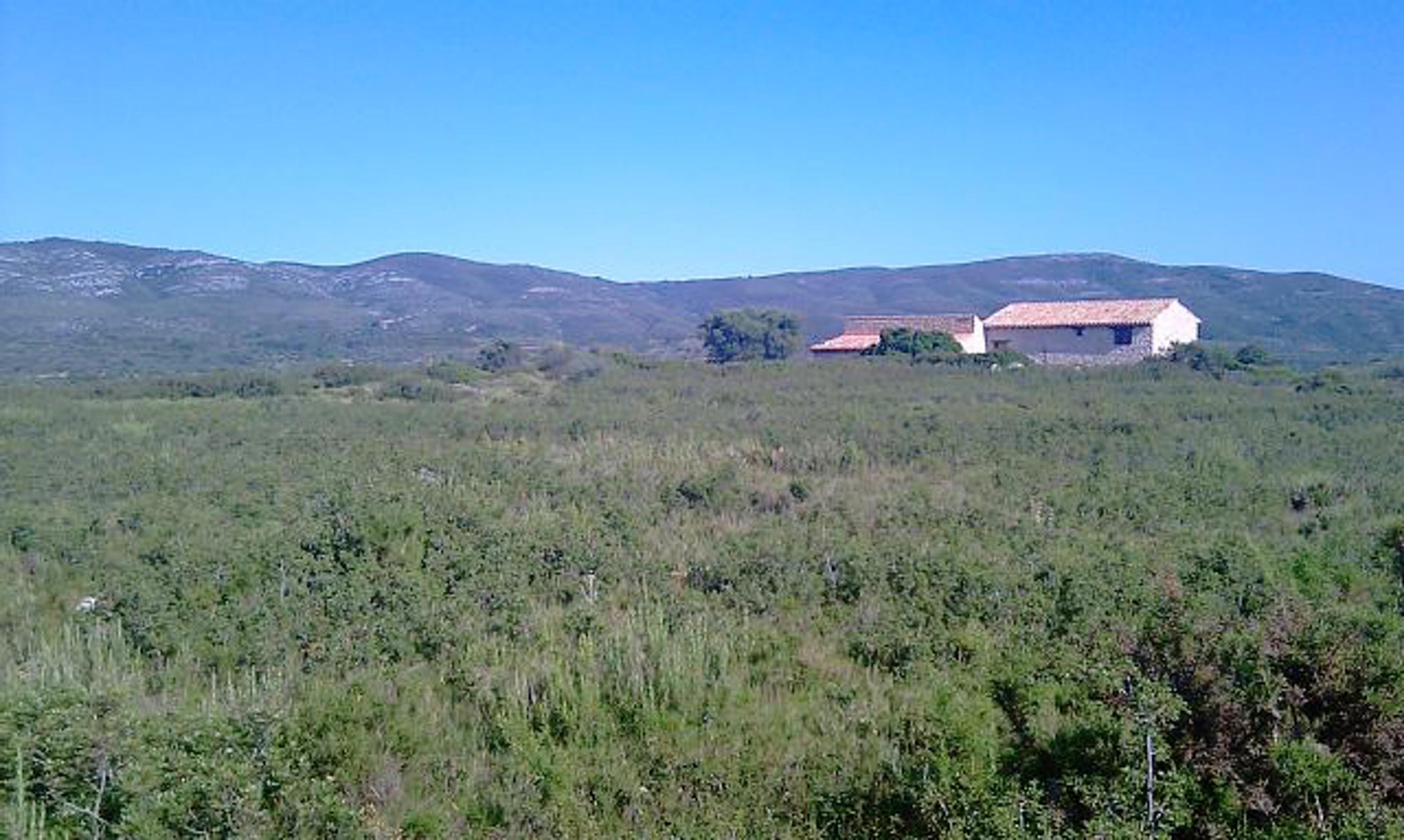 Ferienhaus Villa mit 6 Schlafzimmern in La Salzadella mit privatem Pool und eingezäuntem Garten (2706150), La Salzadella, Provinz Castellón, Valencia, Spanien, Bild 19