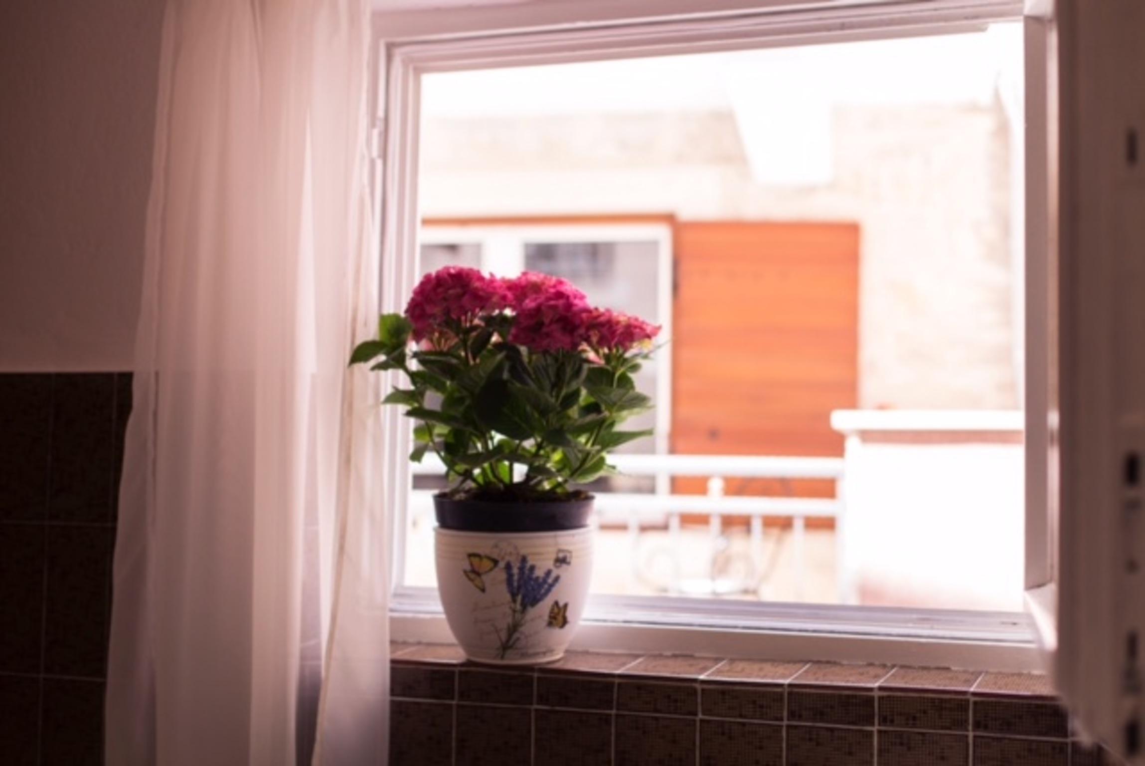 Ferienwohnung Wohnung mit 2 Zimmern in Baaka Voda mit herrlichem Meerblick, möblierter Terrasse und W-L (2201397), Baška Voda, , Dalmatien, Kroatien, Bild 3