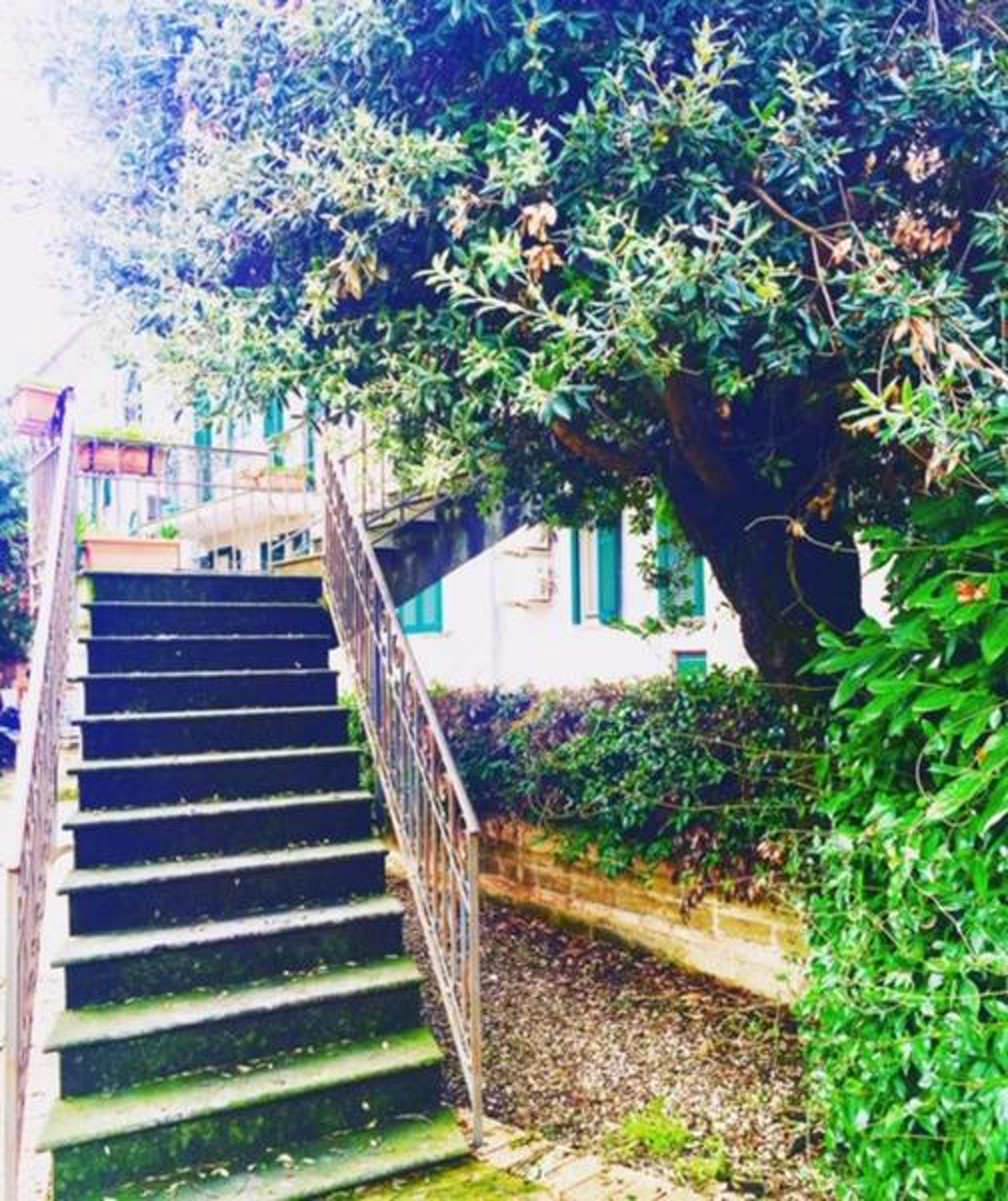 Ferienhaus Haus mit 2 Schlafzimmern in Salerno mit möblierter Terrasse und W-LAN (2644279), Salerno, Salerno, Kampanien, Italien, Bild 57