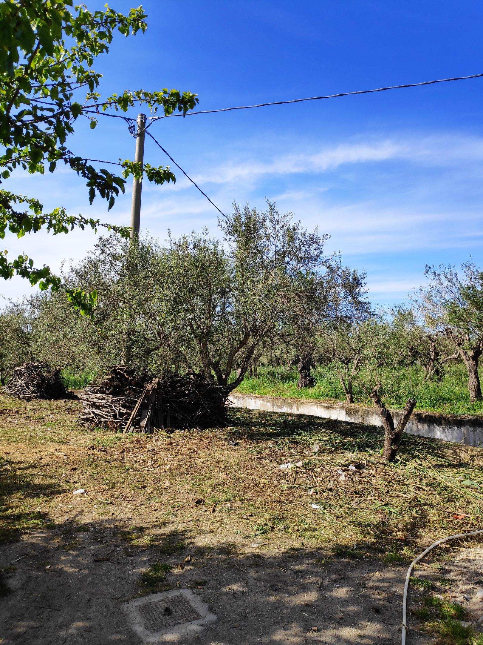 Ferienwohnung Studio in Mongiove mit eingezäuntem Garten - 800 m vom Strand entfernt (2599796), Patti, Messina, Sizilien, Italien, Bild 28
