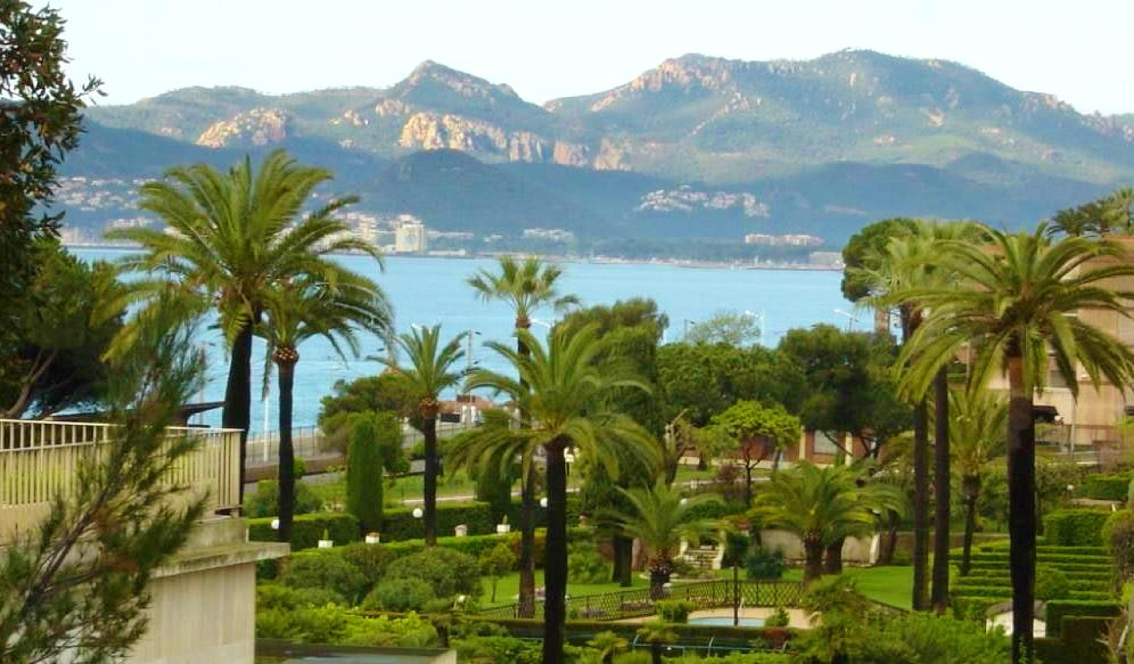 Holiday apartment Studio in Cannes mit herrlichem Meerblick und eingezäuntem Garten - 250 m vom Strand entfe (2271483), Cannes la Bocca, Côte d'Azur, Provence - Alps - Côte d'Azur, France, picture 3