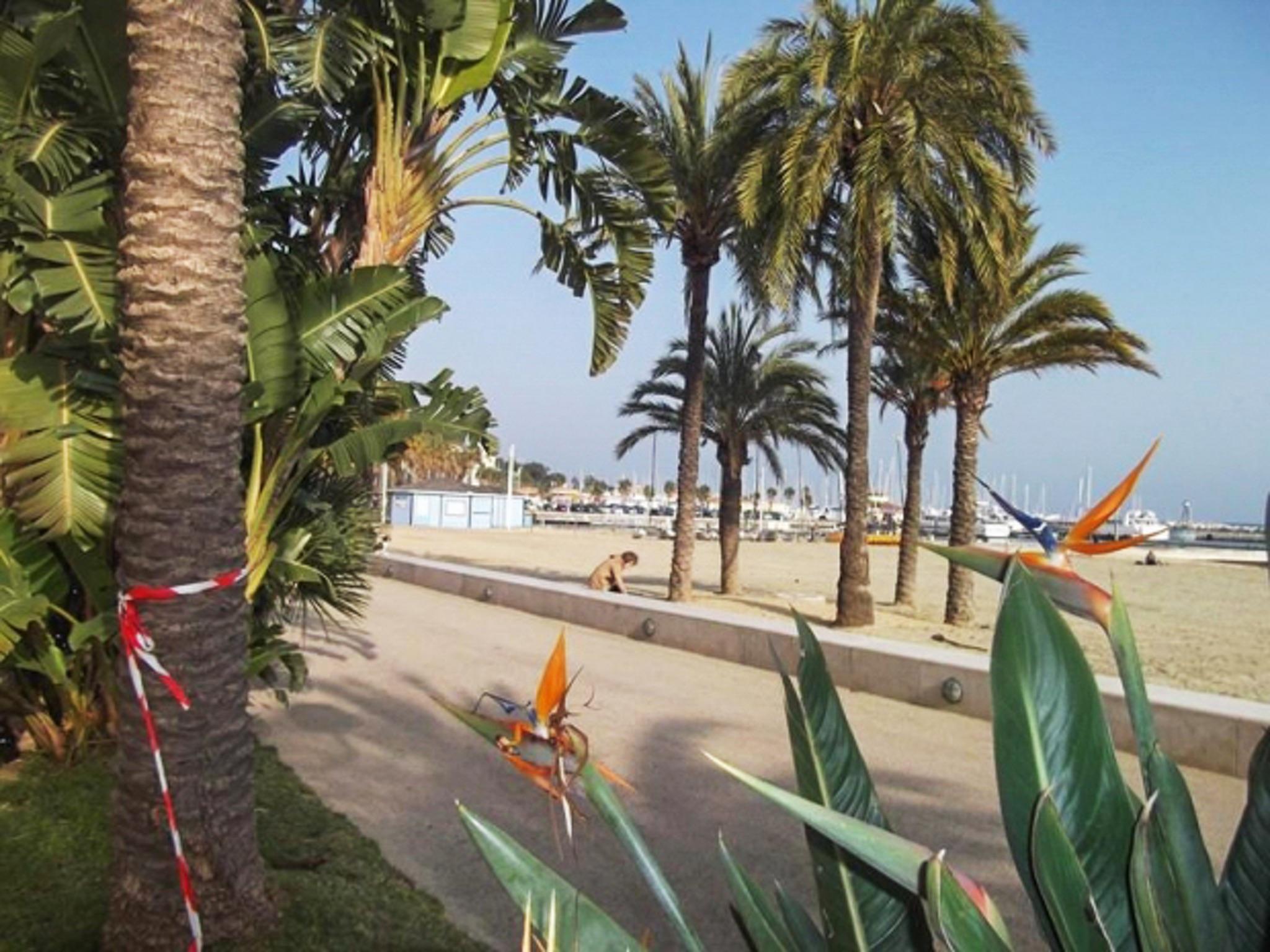 Holiday apartment Helle Zweizimmerwohnung mit Meerblick und Balkon - 50 m vom Strand in Le Lavandou entfernt (2201212), Le Lavandou, Côte d'Azur, Provence - Alps - Côte d'Azur, France, picture 10