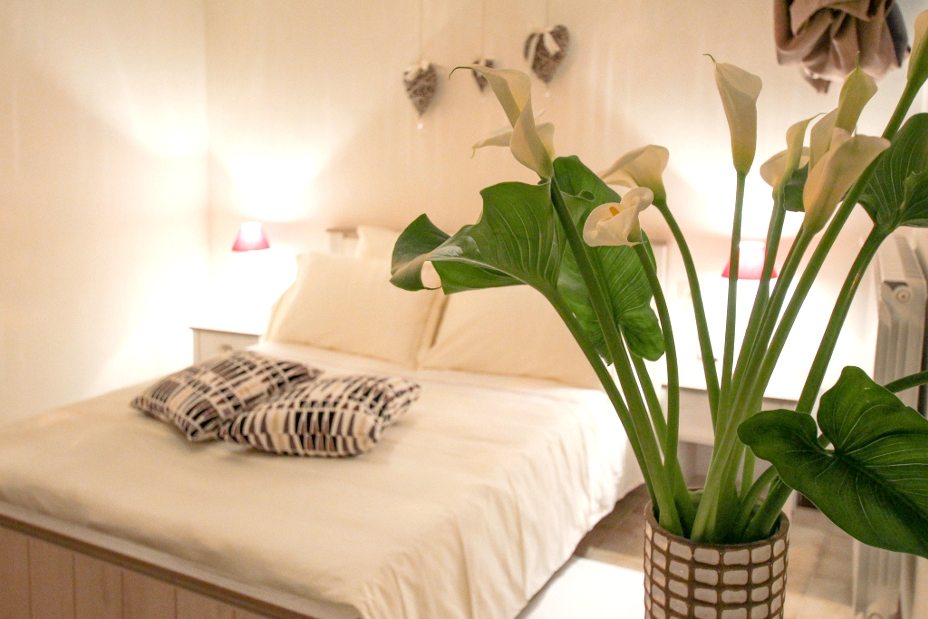 Ferienwohnung Wohnung mit 2 Schlafzimmern in Alberobello mit schöner Aussicht auf die Stadt und W-LAN -  (2201240), Alberobello, Bari, Apulien, Italien, Bild 15