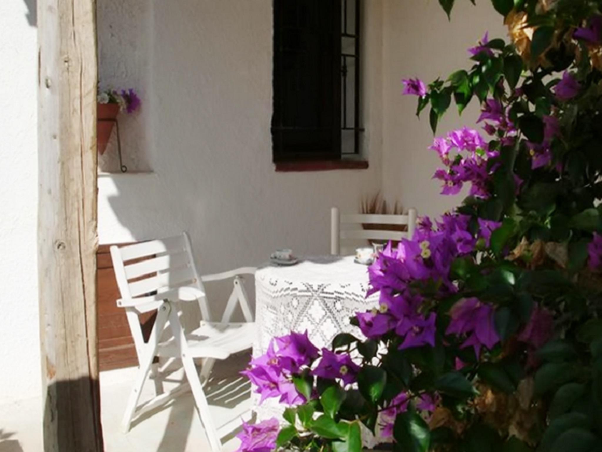 Holiday house Landhaus in Balestrate, Sizilien, mit Terrasse und Garten (2201079), Balestrate, Palermo, Sicily, Italy, picture 4