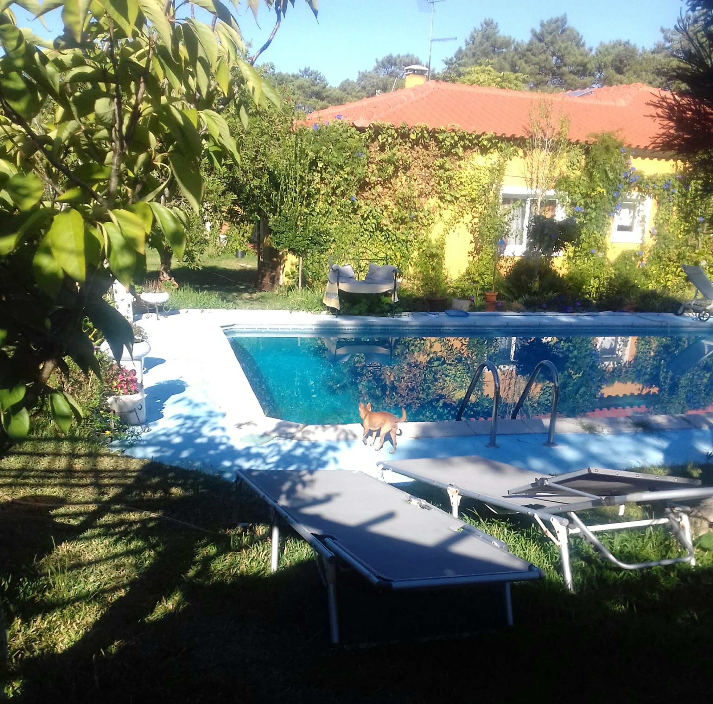 Holiday house Haus mit einem Schlafzimmer in Nazaré mit Pool, eingezäuntem Garten und W-LAN - 7 km vom S (2410448), Nazaré, Costa de Prata, Central-Portugal, Portugal, picture 34
