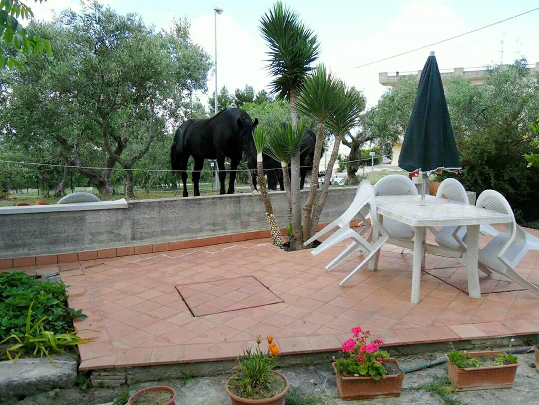 Ferienwohnung Studio in Matera mit möblierter Terrasse und W-LAN - 40 km vom Strand entfernt (2545729), Matera, Matera, Basilikata, Italien, Bild 10
