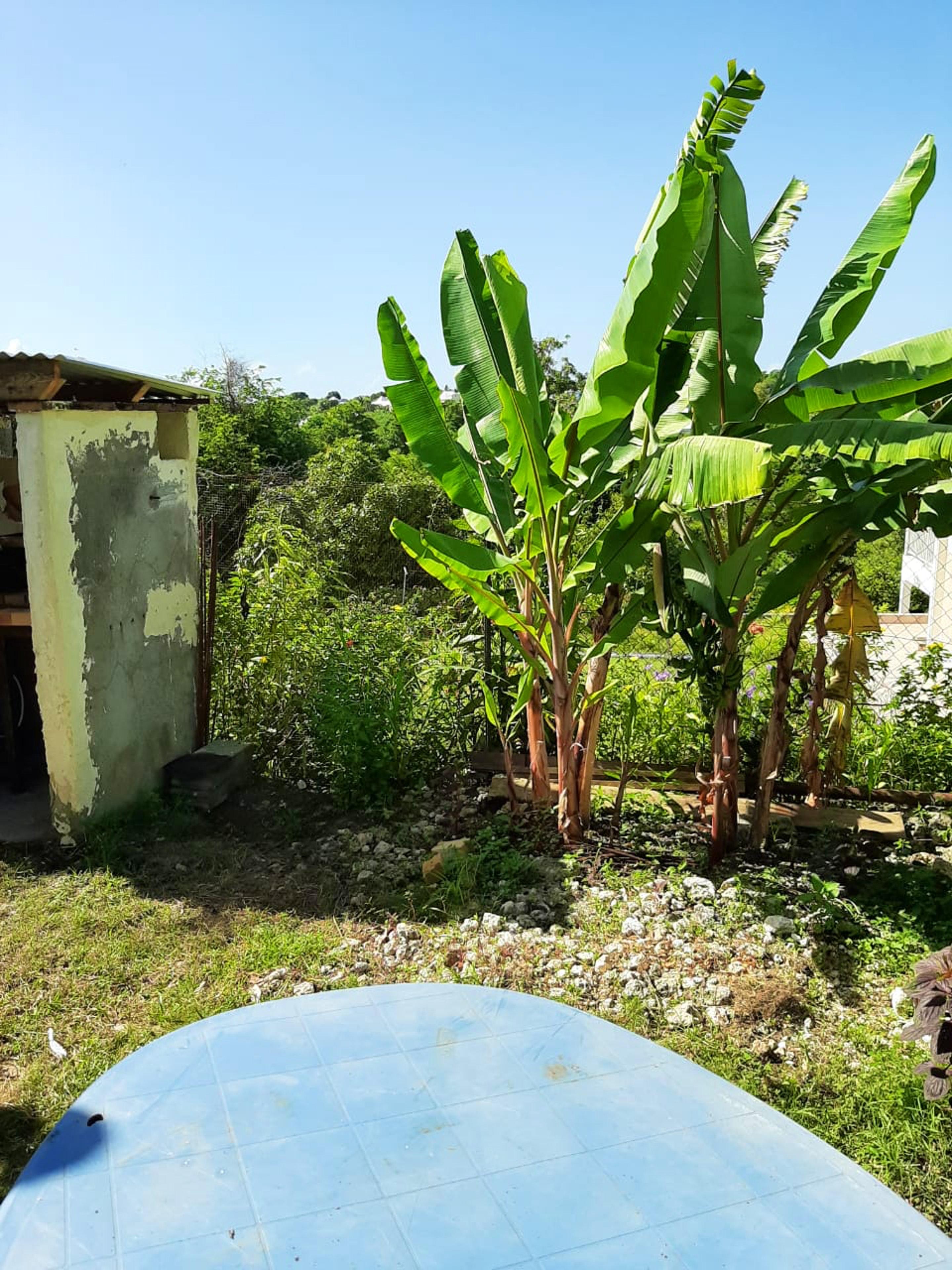 Ferienhaus Bungalow mit einem Schlafzimmer in Sainte-Anne mit eingezäuntem Garten und W-LAN - 3 km vo (2663912), Sainte-Anne (Guadeloupe), Grande-Terre, Guadeloupe, Karibische Inseln, Bild 6