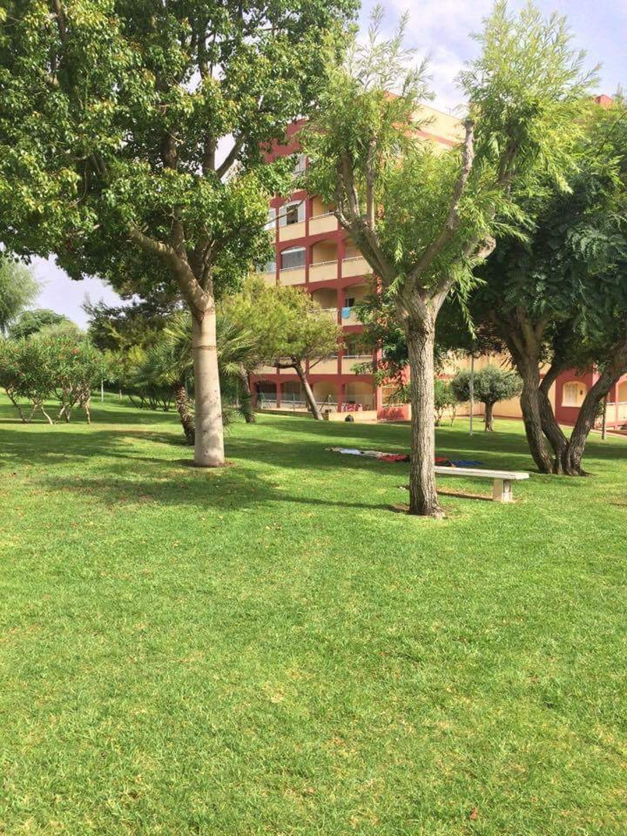 Ferienwohnung Wohnung mit 2 Schlafzimmern in Torrevieja mit Pool und möblierter Terrasse - 400 m vom Str (2342556), Torrevieja, Costa Blanca, Valencia, Spanien, Bild 11
