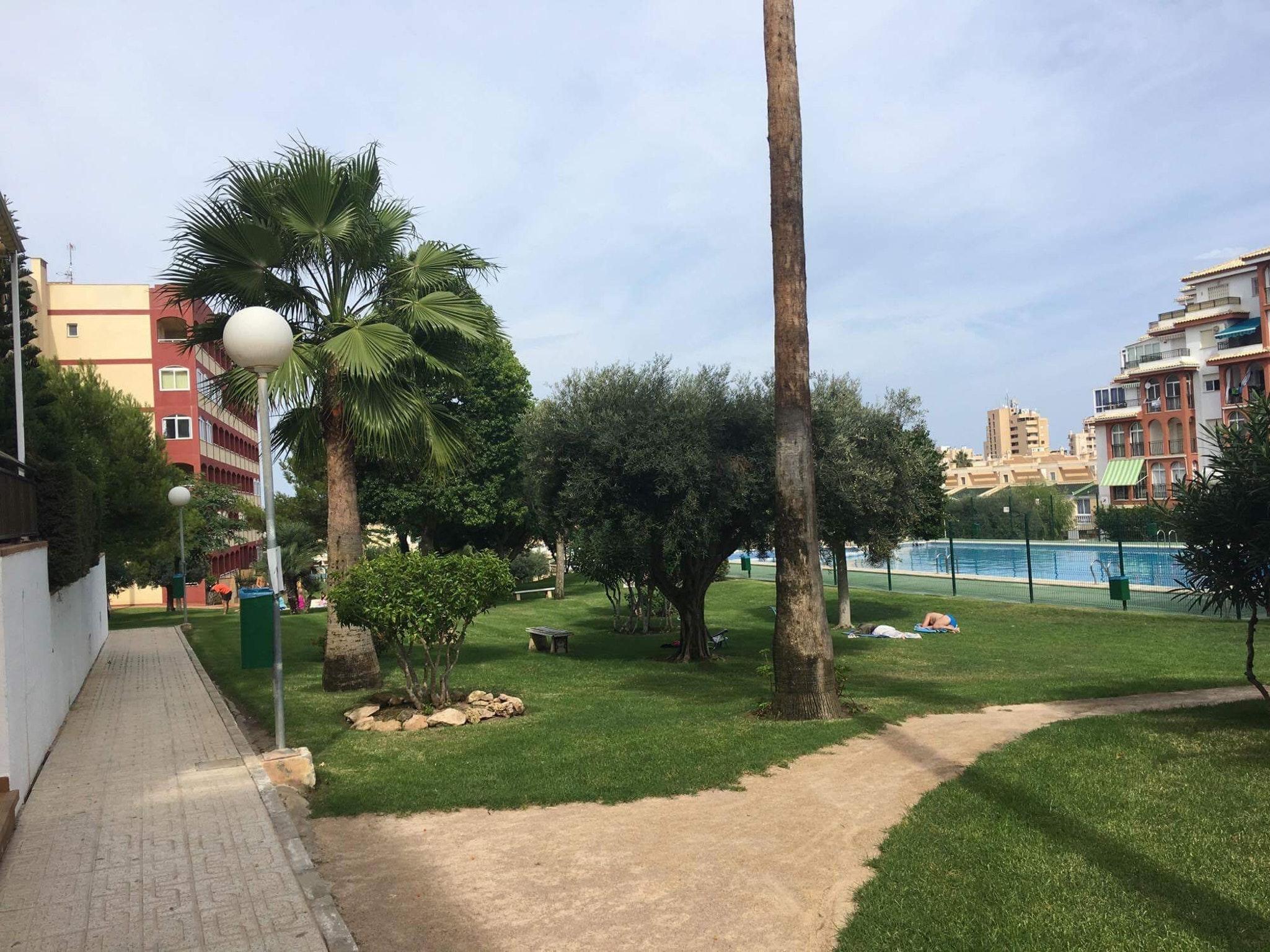 Ferienwohnung Wohnung mit 2 Schlafzimmern in Torrevieja mit Pool und möblierter Terrasse - 400 m vom Str (2342556), Torrevieja, Costa Blanca, Valencia, Spanien, Bild 17