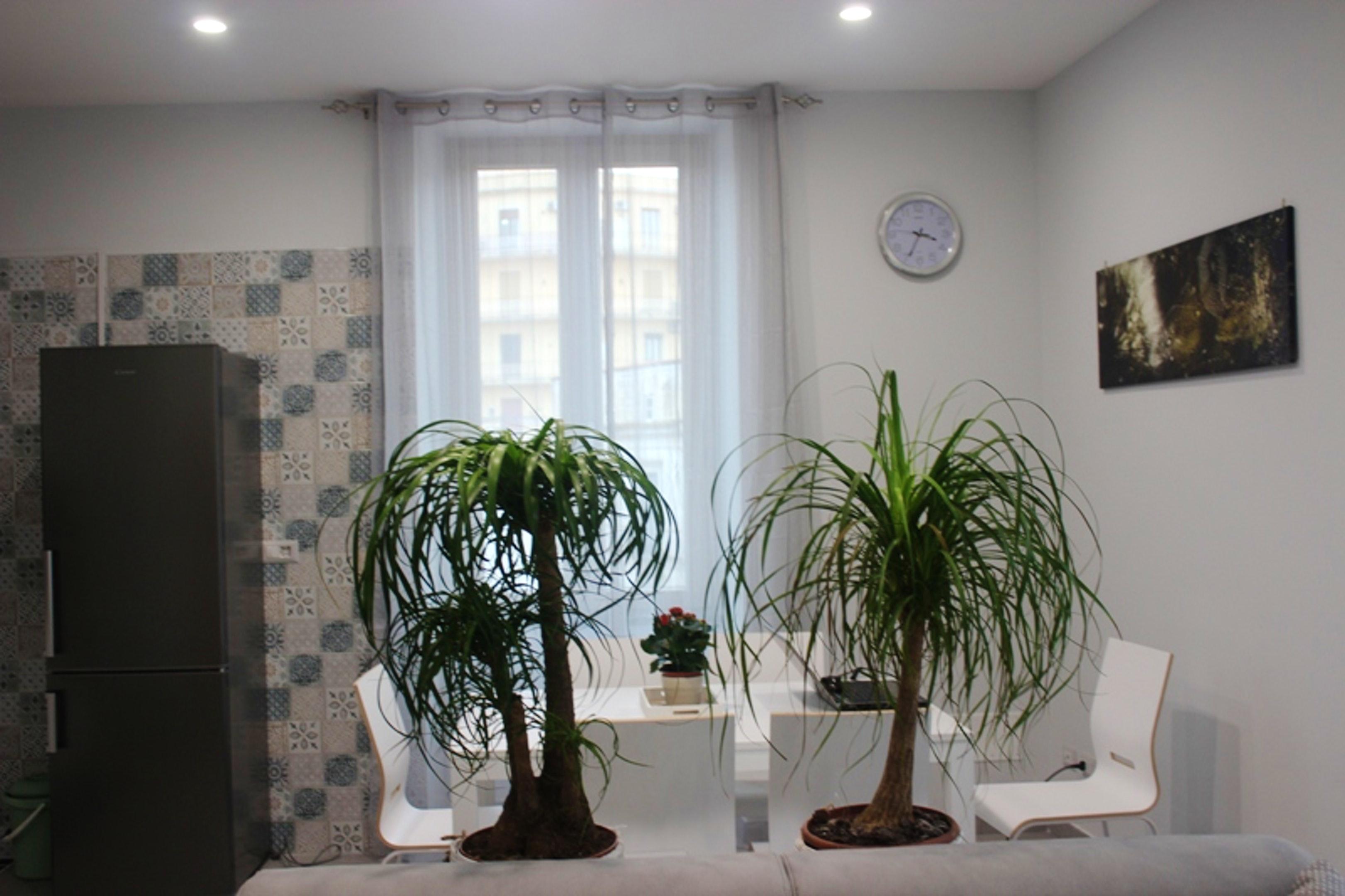 Ferienwohnung Wohnung mit einem Schlafzimmer in Sant'Agnello mit schöner Aussicht auf die Stadt, möblier (2791793), Sant'Agnello, Amalfiküste, Kampanien, Italien, Bild 14