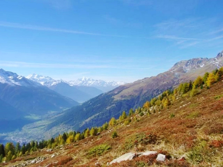 Ferienhaus Hütte mit 3 Schlafzimmern in Bellwald mit toller Aussicht auf die Berge, Balkon und W-LAN (2201041), Bellwald, Aletsch - Goms, Wallis, Schweiz, Bild 15