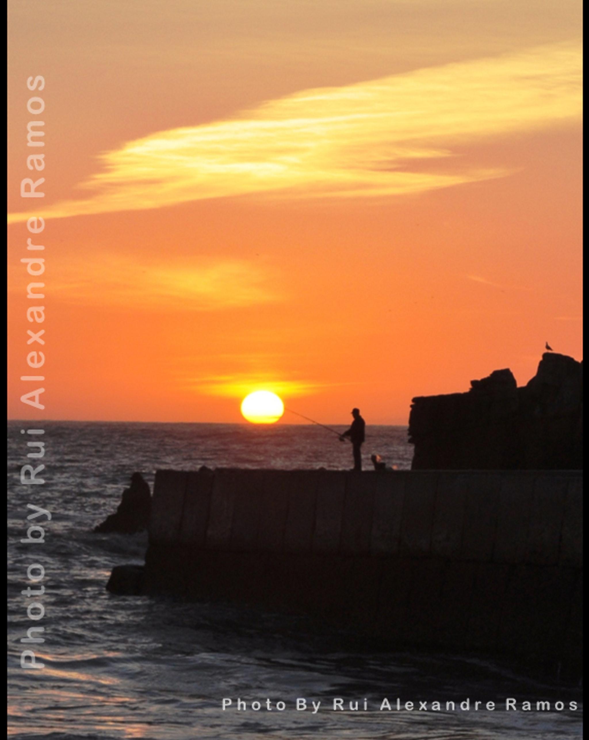 Ferienwohnung Wohnung mit einem Schlafzimmer in Peniche mit Terrasse und W-LAN - 400 m vom Strand entfer (2622208), Peniche, Costa de Prata, Zentral-Portugal, Portugal, Bild 14