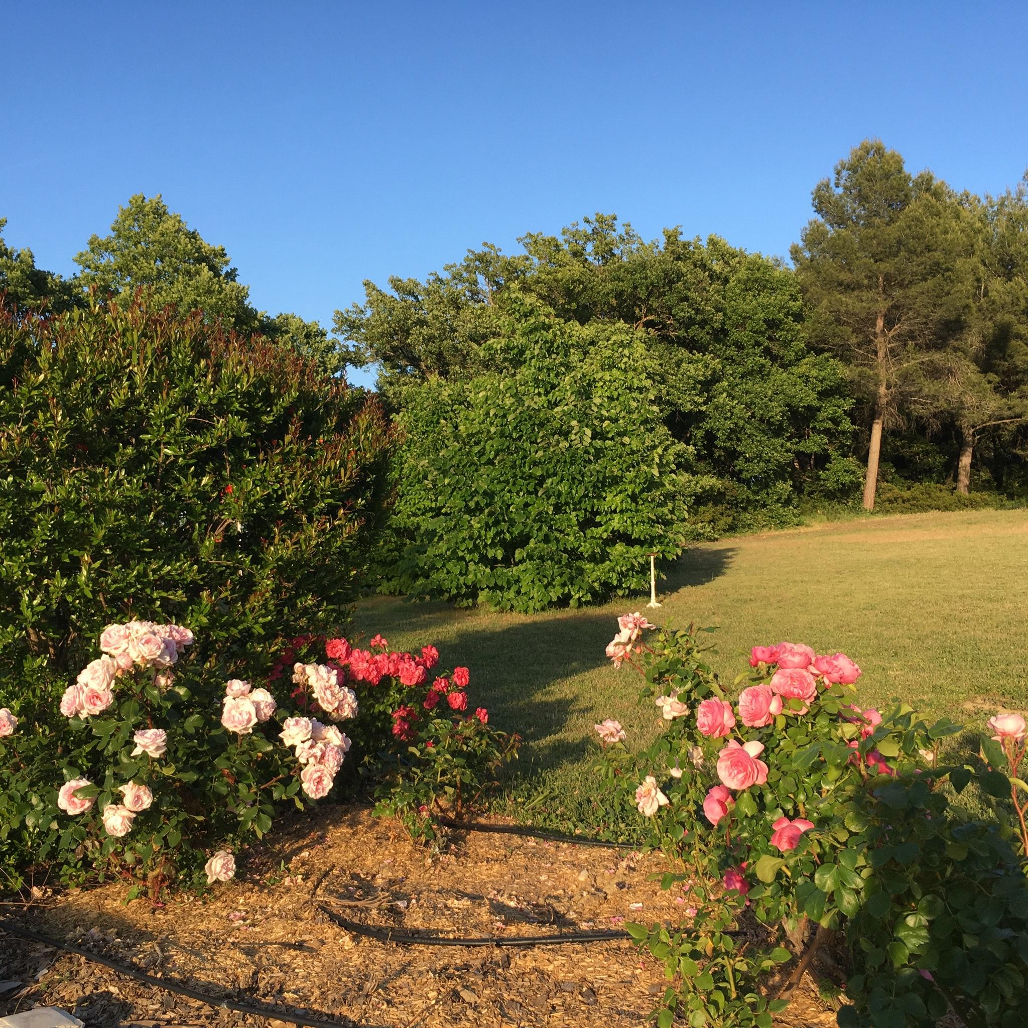 Ferienhaus Villa mit 4 Schlafzimmern in Pernes-les-Fontaines mit toller Aussicht auf die Berge, priva (2519446), Pernes les Fontaines, Saône-et-Loire, Burgund, Frankreich, Bild 6
