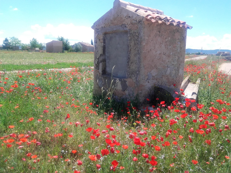Ferienhaus Haus mit 5 Schlafzimmern in Casas del Cerro mit toller Aussicht auf die Berge und möbliert (2201517), Casas del Cerro, Albacete, Kastilien-La Mancha, Spanien, Bild 45