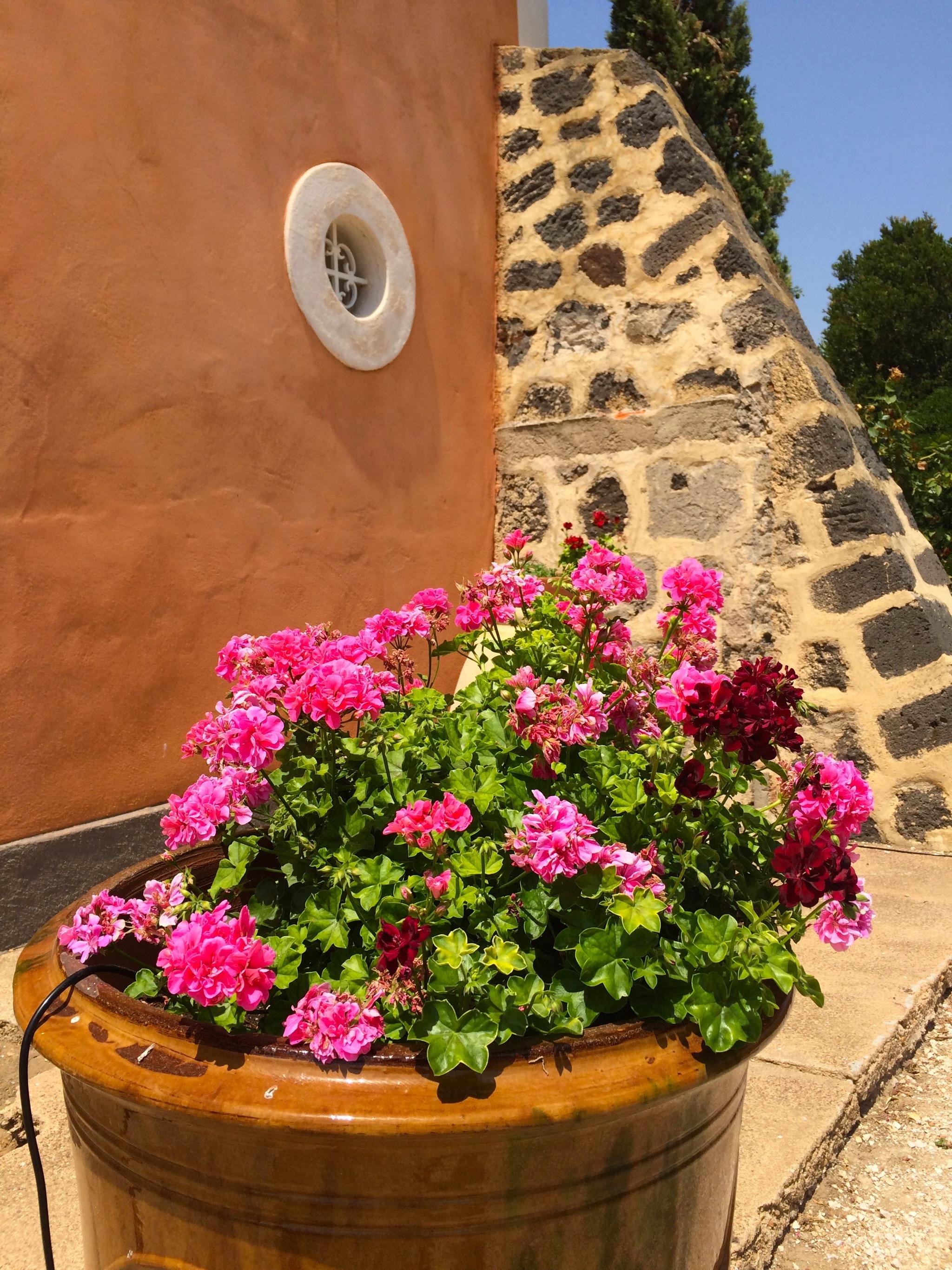 Ferienhaus Charaktervolles Haus in Hérault mit Pool und Garten (2201003), Portiragnes, Mittelmeerküste Hérault, Languedoc-Roussillon, Frankreich, Bild 34