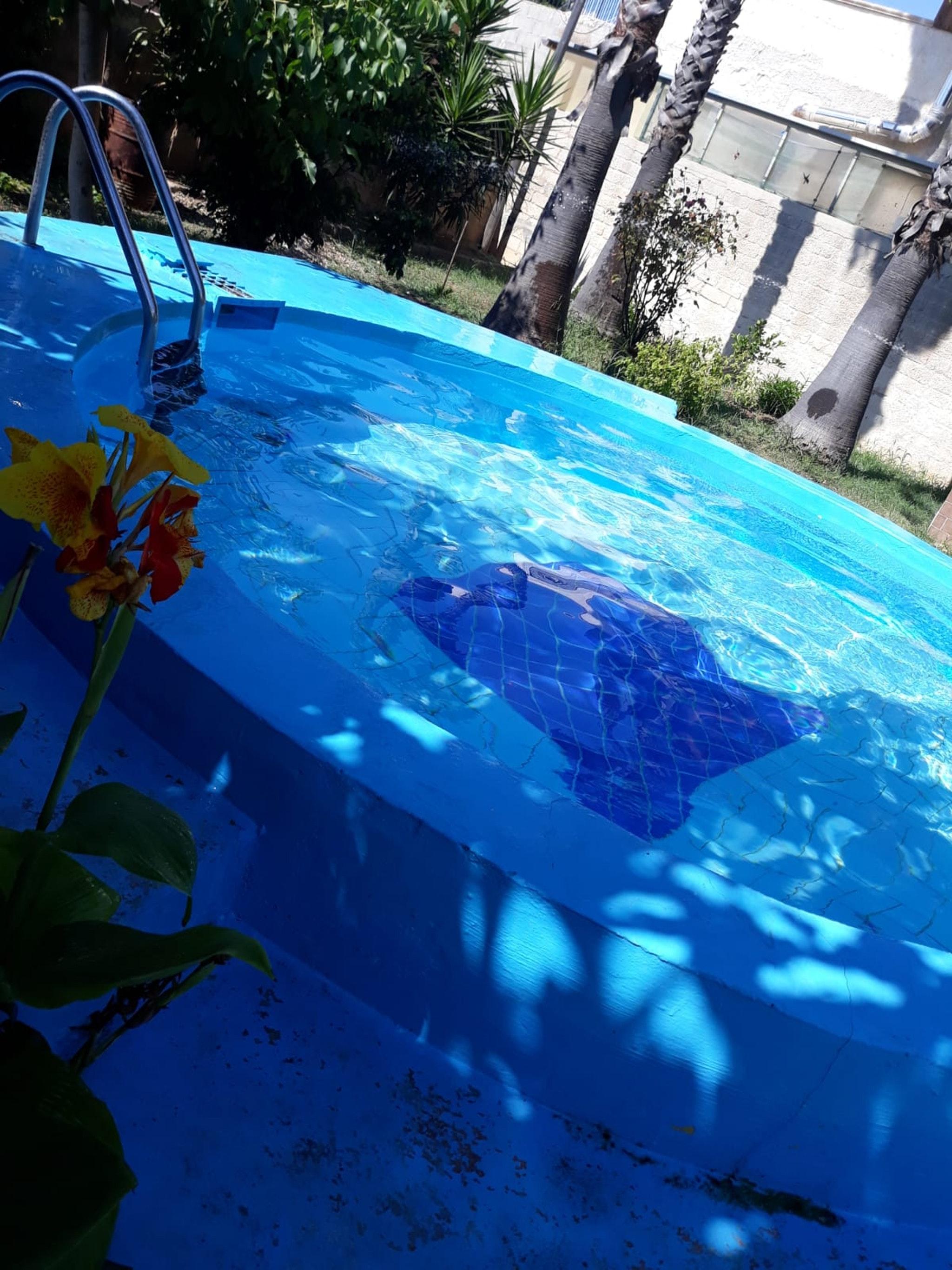 Appartement de vacances Wohnung mit 2 Schlafzimmern in Cicirata mit herrlichem Meerblick, Pool, eingezäuntem Garte (2339675), Avola, Siracusa, Sicile, Italie, image 41