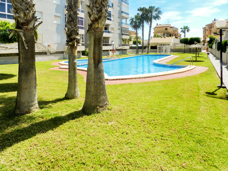 Maison de vacances Haus mit 2 Schlafzimmern in Torrevieja, Alicante mit schöner Aussicht auf die Stadt, Pool, (2201630), Torrevieja, Costa Blanca, Valence, Espagne, image 53