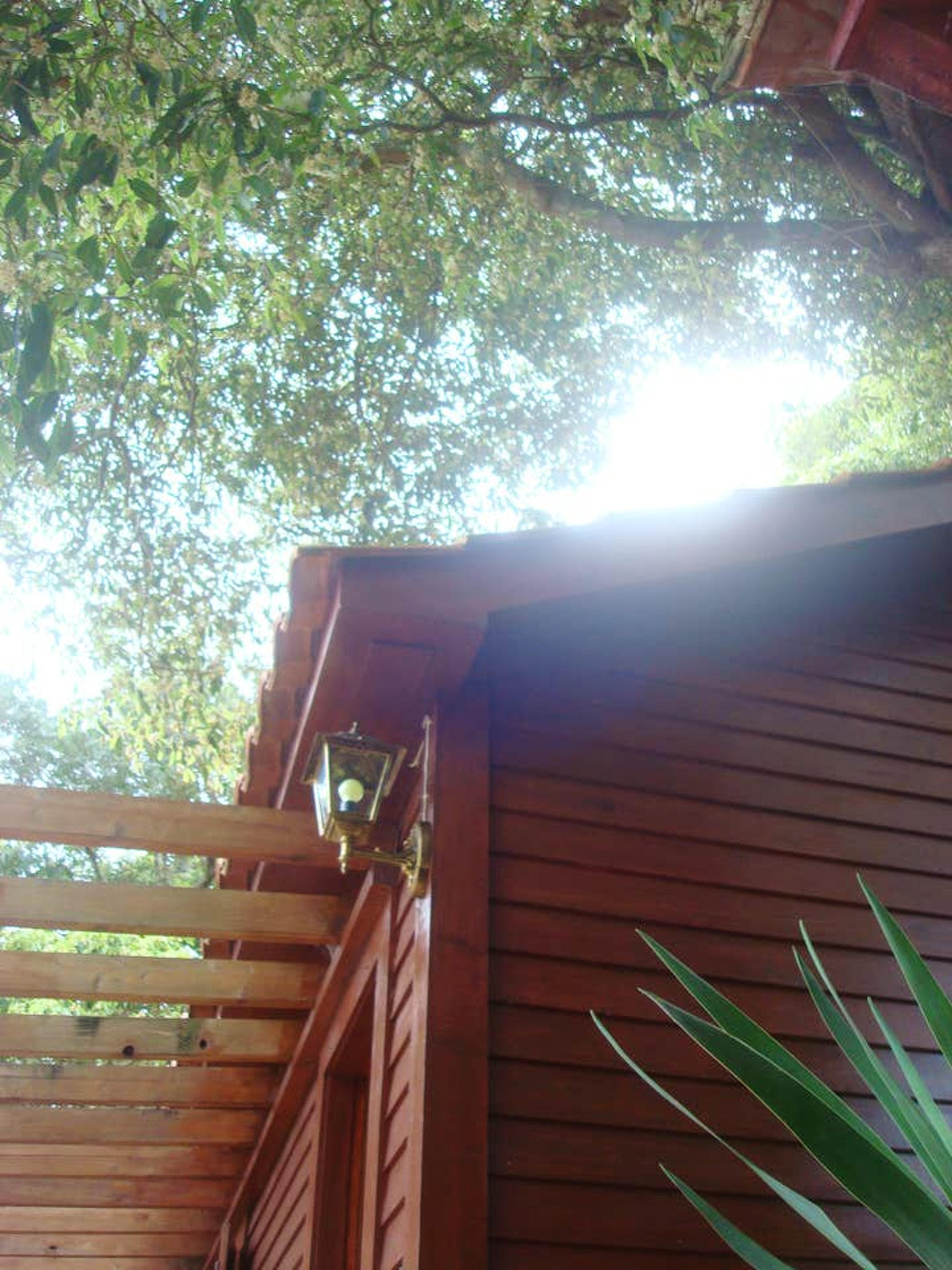 Ferienhaus Haus mit 2 Schlafzimmern in Prainha mit herrlichem Meerblick, möblierter Terrasse und W-LA (2730065), Prainha, Pico, Azoren, Portugal, Bild 10