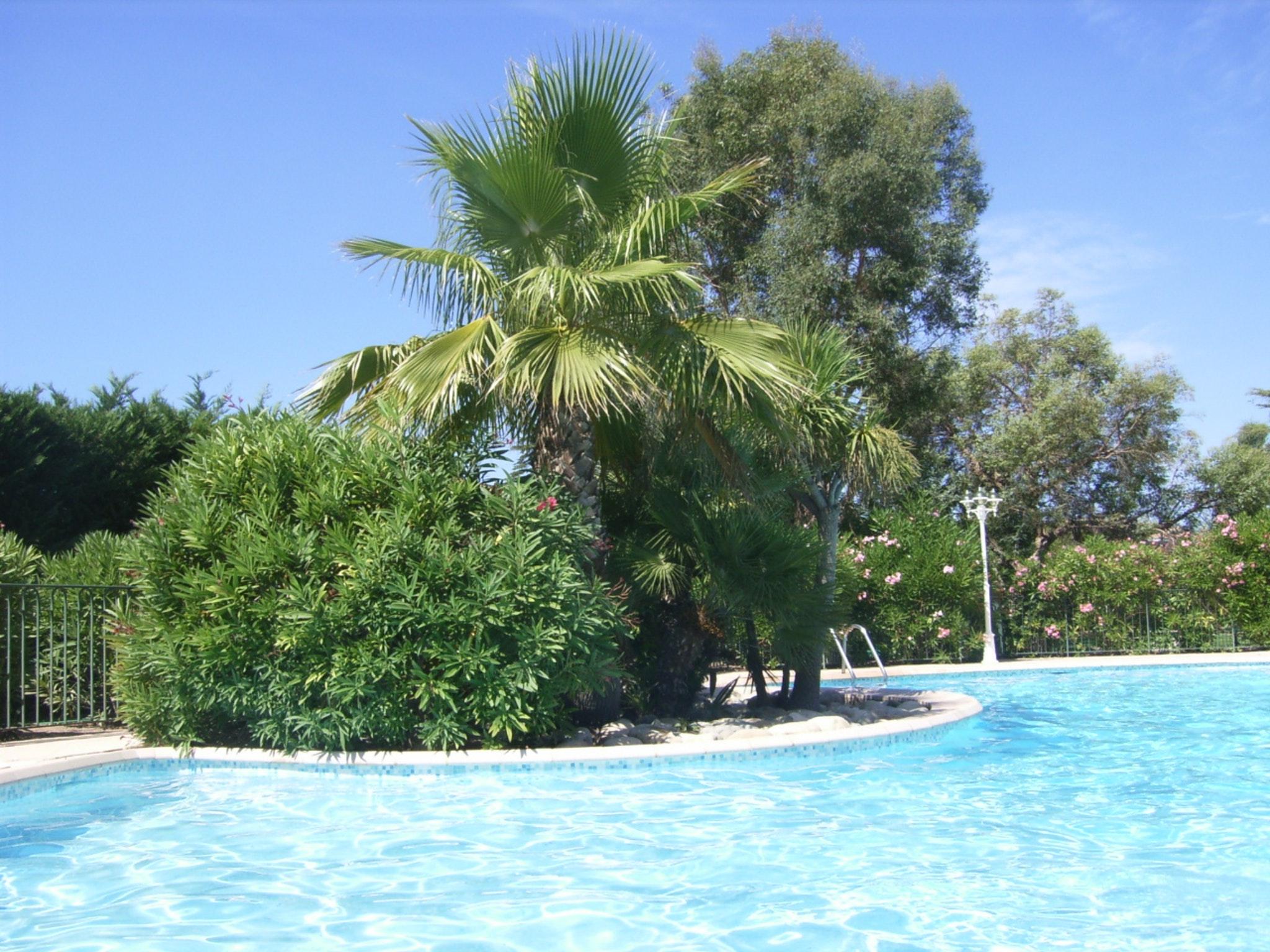 Appartement de vacances Wohnung mit einem Schlafzimmer in Carqueiranne mit Pool, eingezäuntem Garten und W-LAN - 7 (2231381), Carqueiranne, Côte d'Azur, Provence - Alpes - Côte d'Azur, France, image 2