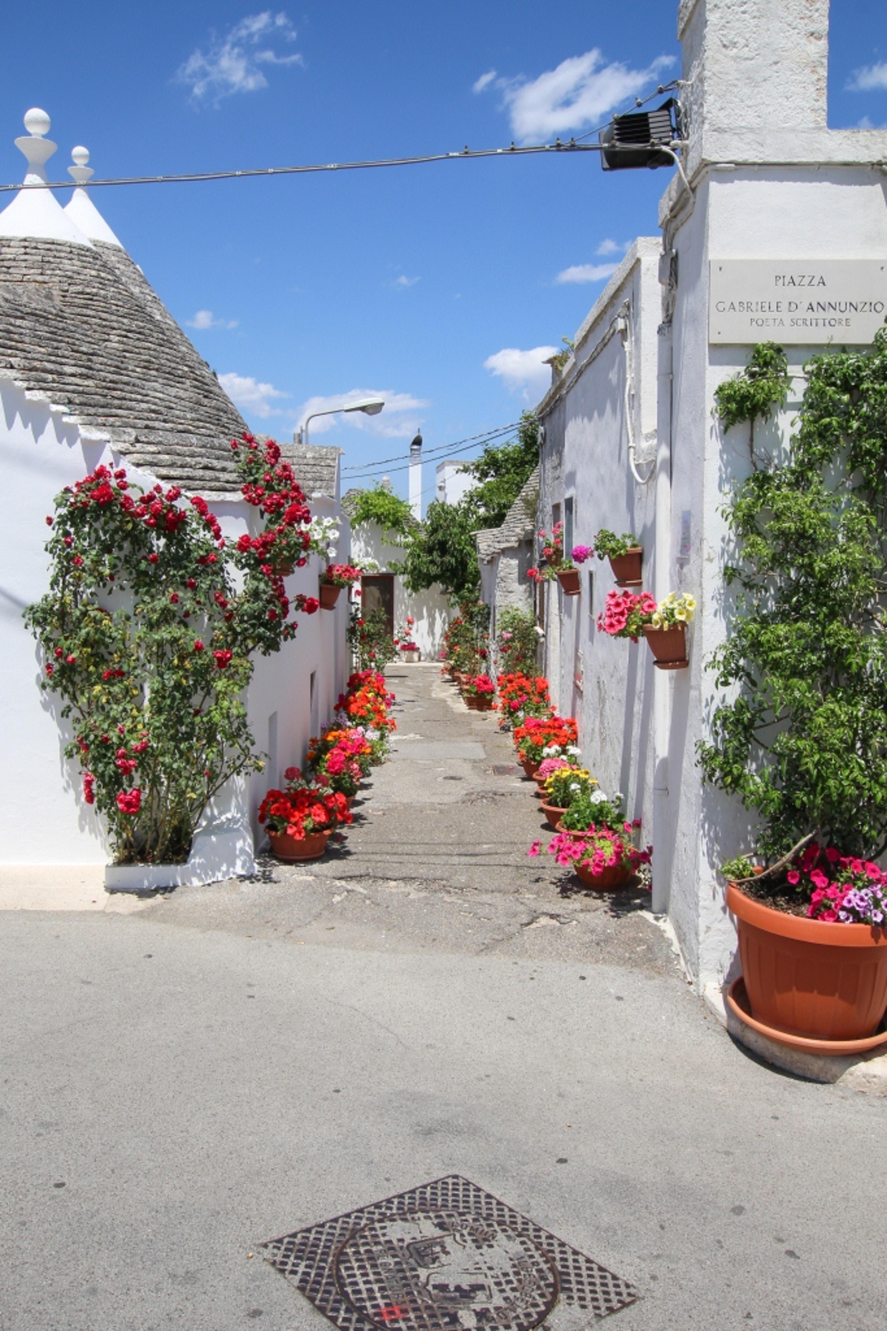 Ferienwohnung Wohnung mit 2 Schlafzimmern in Alberobello mit schöner Aussicht auf die Stadt und W-LAN -  (2201240), Alberobello, Bari, Apulien, Italien, Bild 26