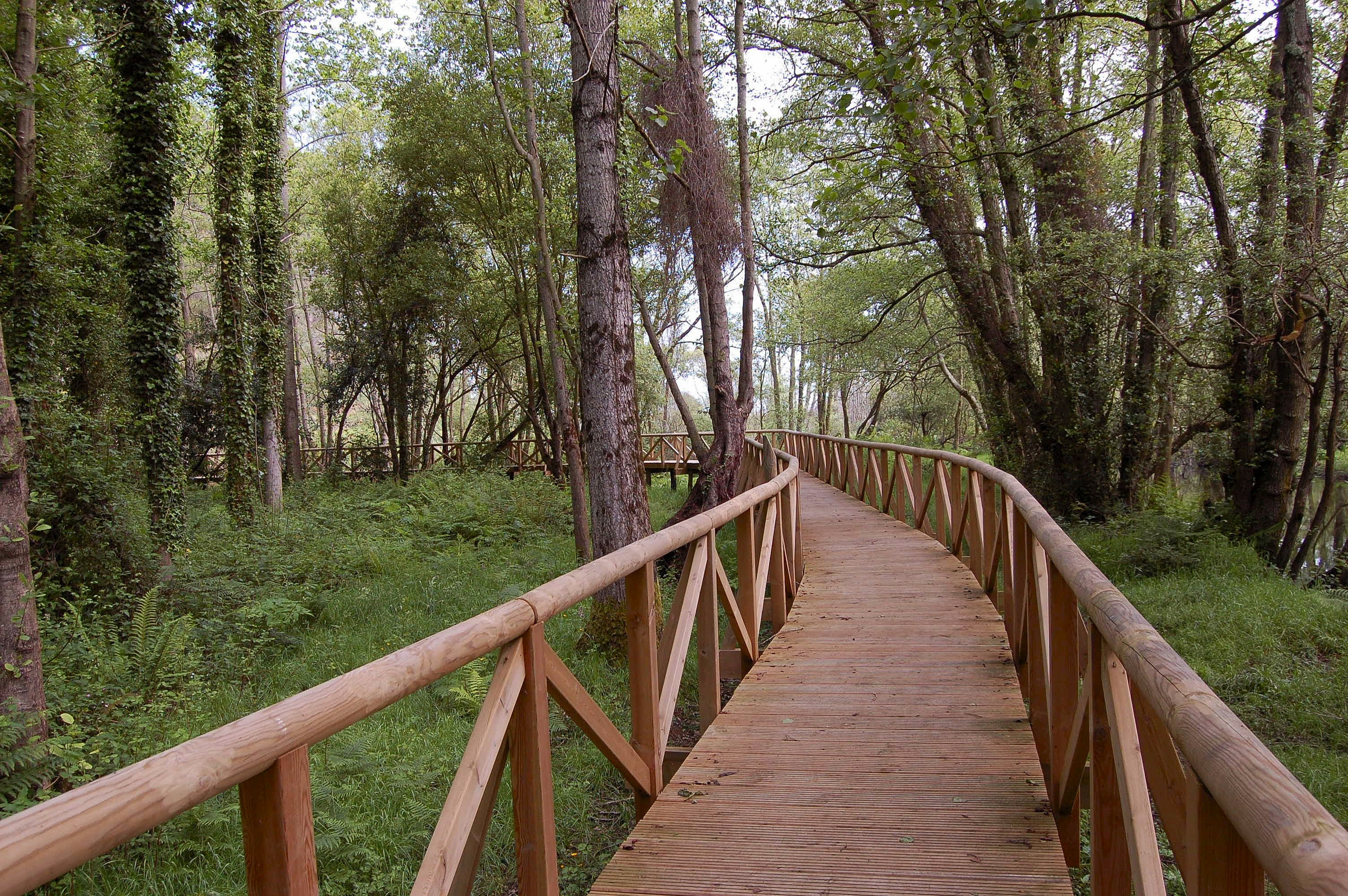 Ferienhaus Haus mit 3 Schlafzimmern in Albuerne mit eingezäuntem Garten - 6 km vom Strand entfernt (2208400), Albuerne, Costa Verde (ES), Asturien, Spanien, Bild 22