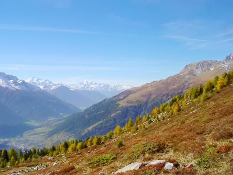Ferienwohnung Wohnung mit 2 Schlafzimmern in Bellwald mit toller Aussicht auf die Berge, Balkon und W-LA (2201042), Bellwald, Aletsch - Goms, Wallis, Schweiz, Bild 16