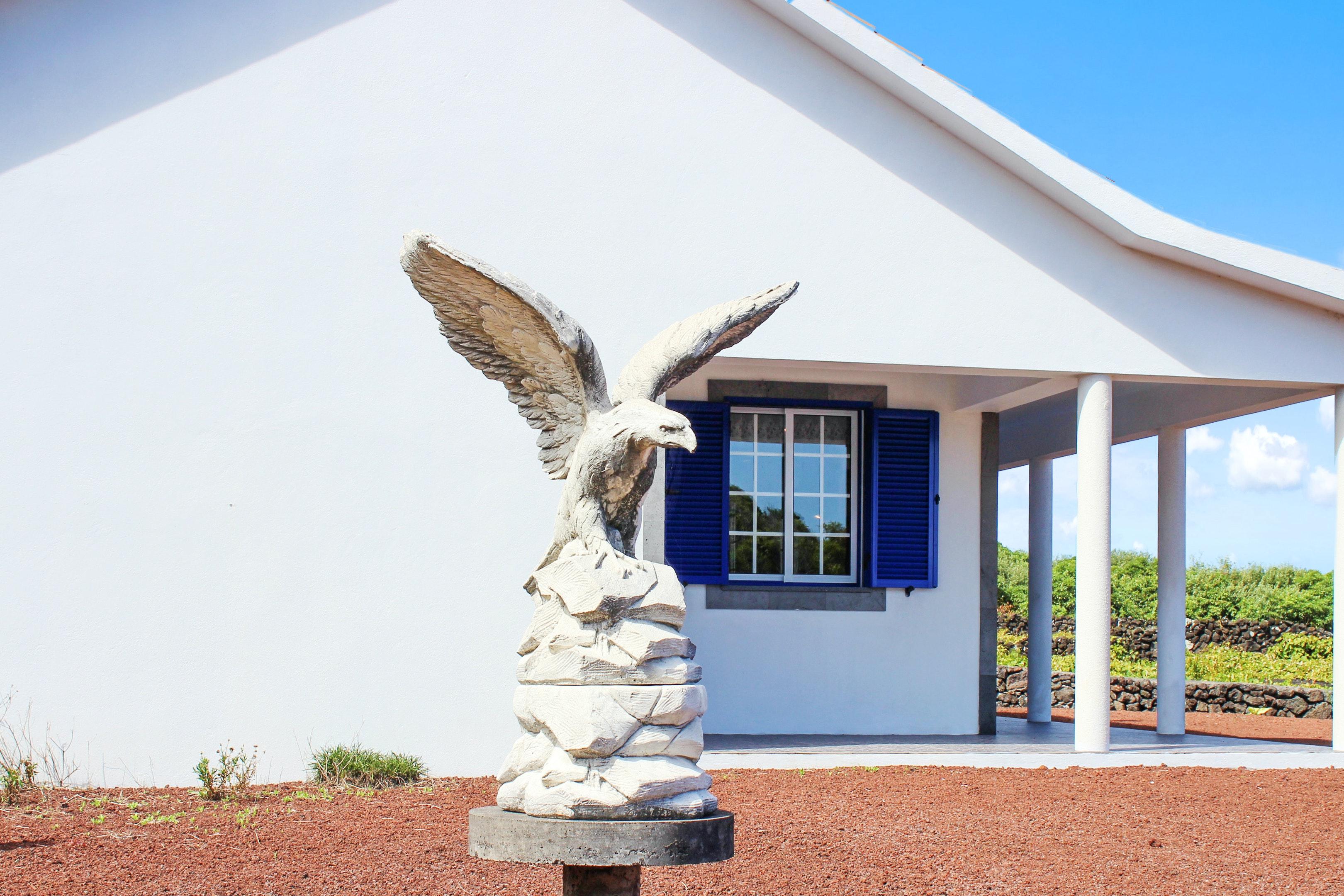 Ferienhaus Haus mit 2 Schlafzimmern in Baixa mit herrlichem Meerblick und eingezäuntem Garten (2202753), Baixa, Pico, Azoren, Portugal, Bild 14