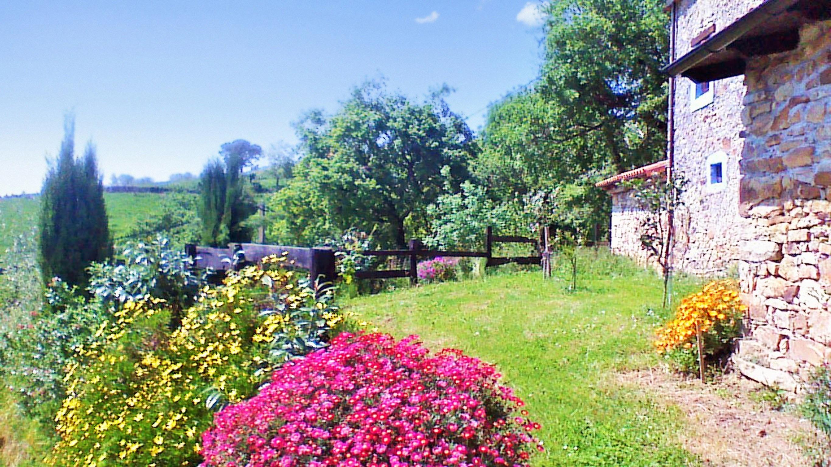 Holiday house Großes Haus in Ampuero mit vier Schlafzimmern und herrlichem Bergblick! (2201236), Ampuero, , Cantabria, Spain, picture 44